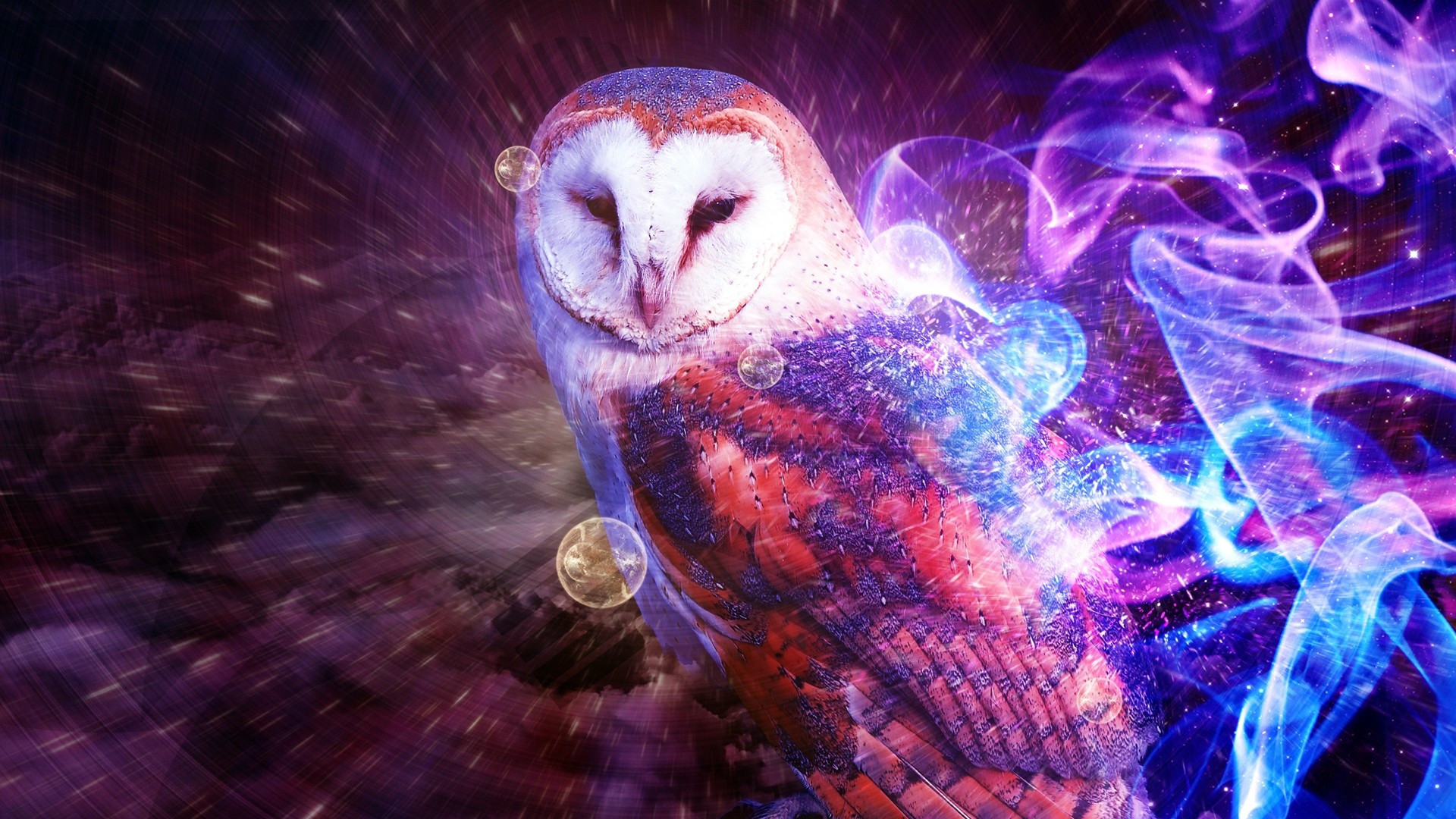 1920x1080 Some trippy owl thing.