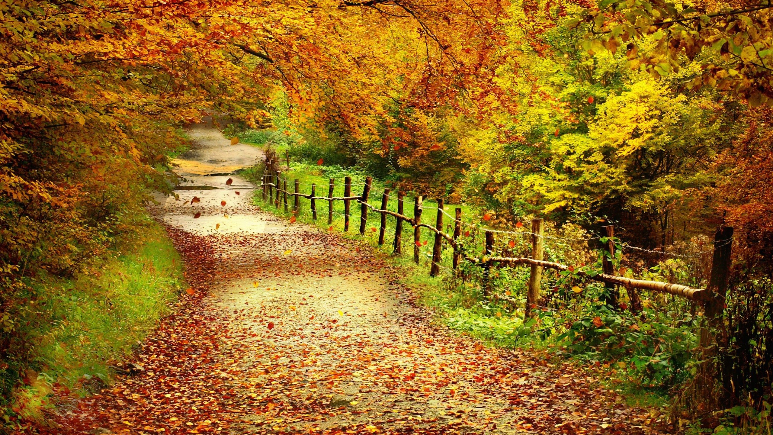 Autumn landscape wallpaper 69 images - Free landscape backgrounds ...