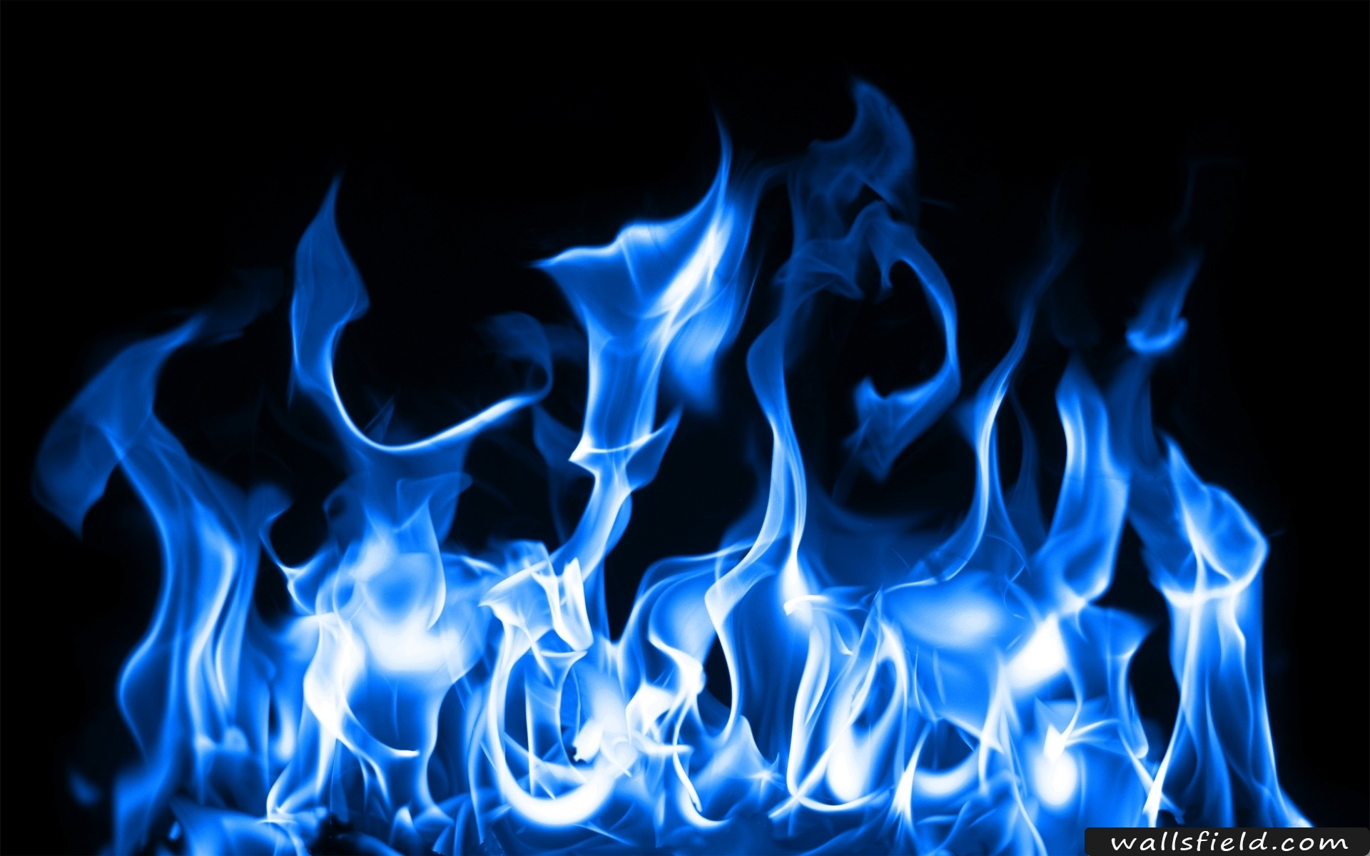 1920x1200 You Can View Download And Comment On Blue Fire Free Hd Wallpapers For Your