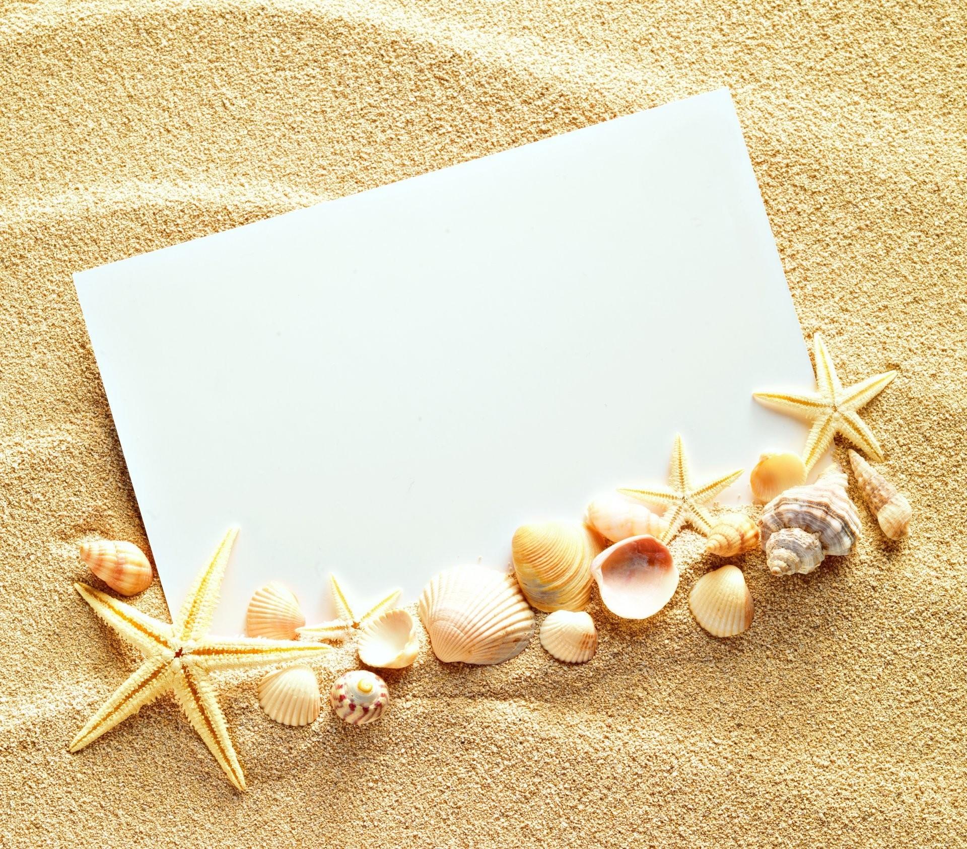 Seashell Backgrounds 43 Images
