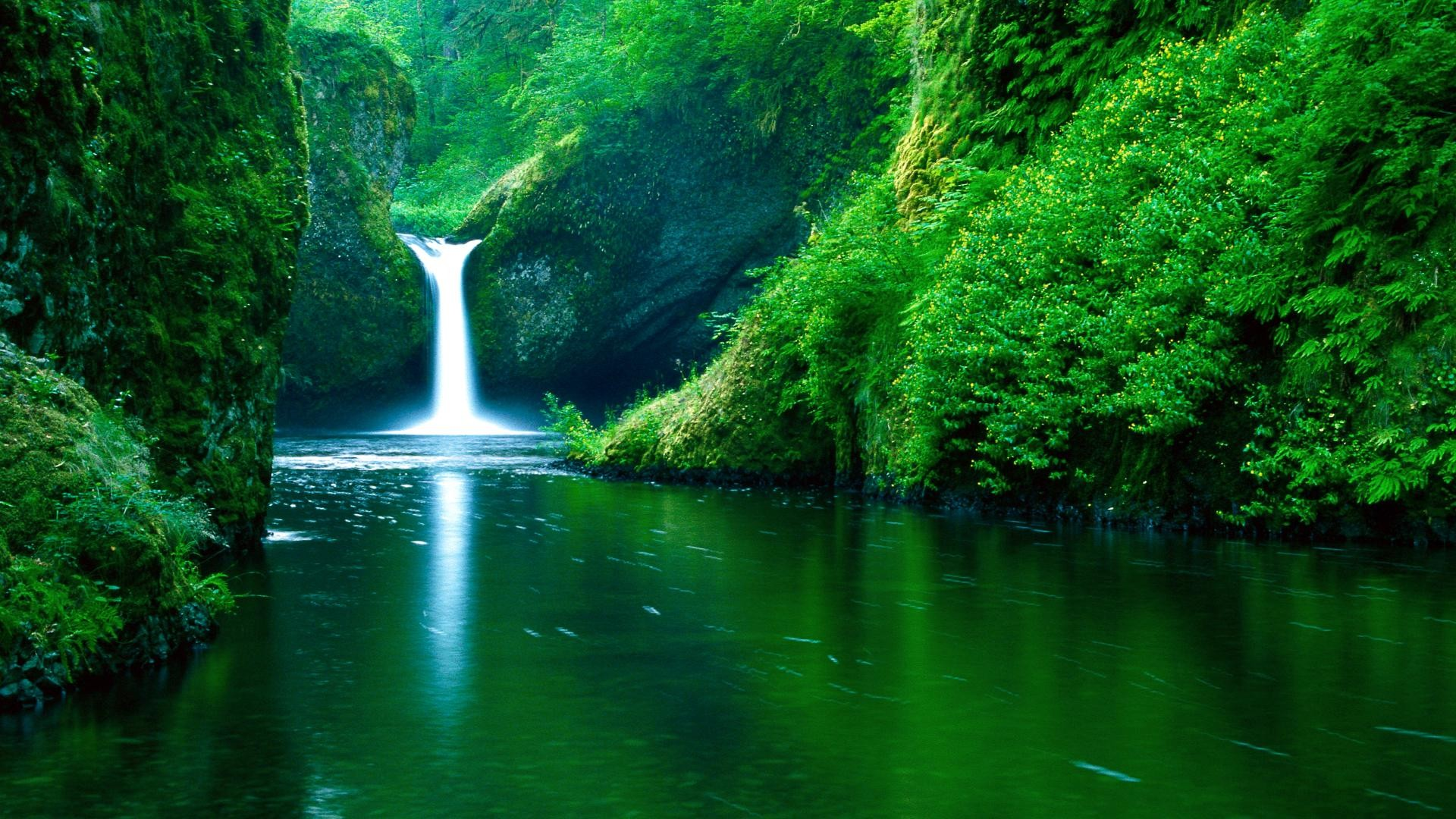 1920x1080 Waterfall in forest wallpaper 48
