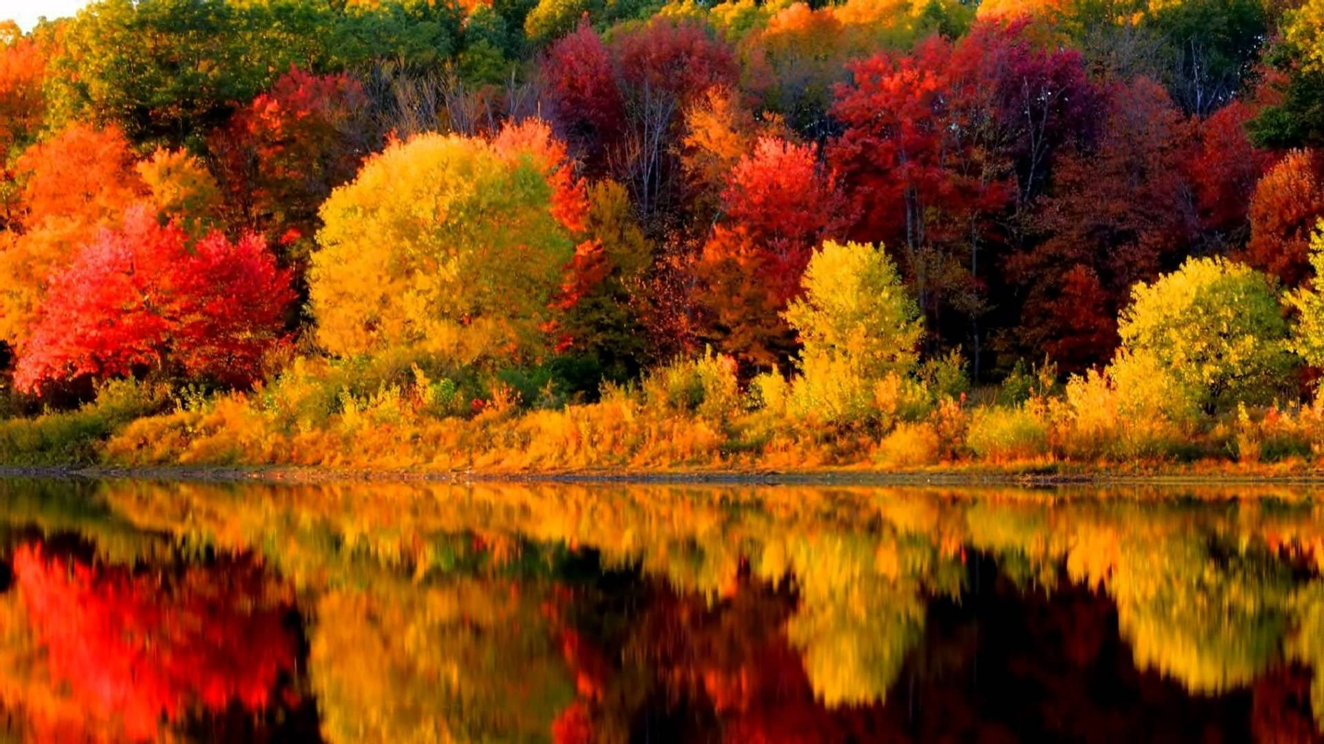 Autumn Leaves - Windows Screen Savers