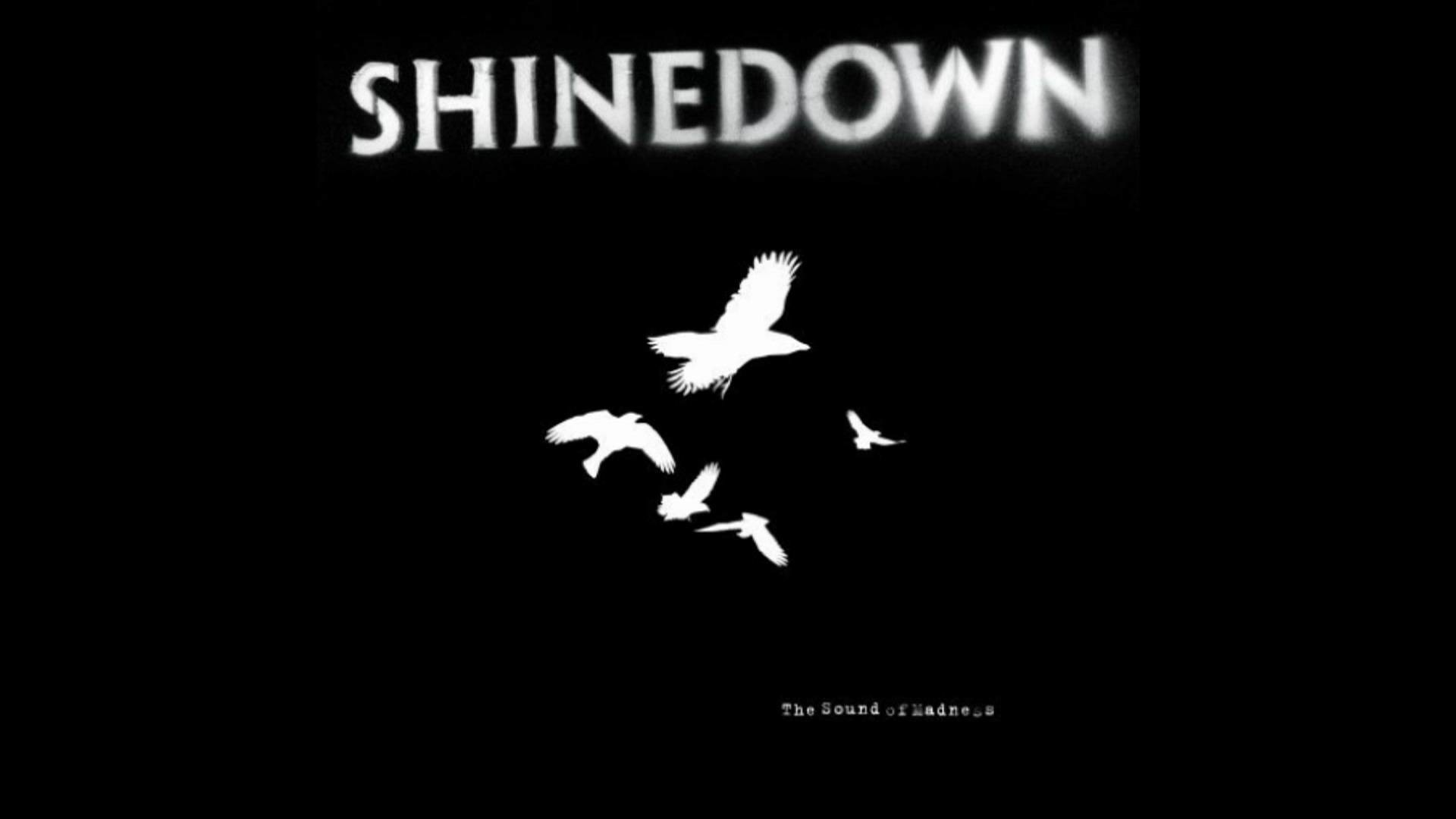 1920x1080  Shinedown Wallpapers - WallpaperPulse