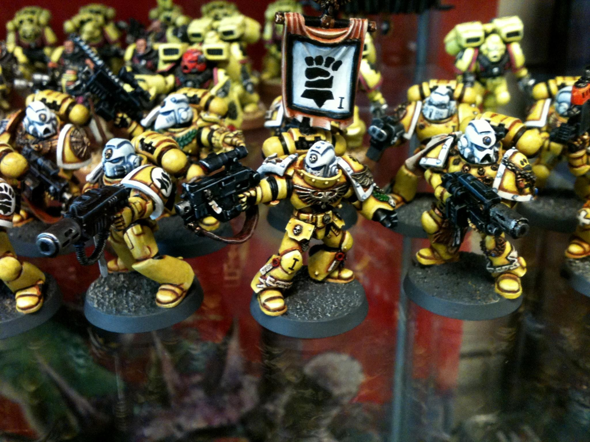 2048x1536 Fist, Fists, Imperial, Stern, Sternguard - Imperial Fist Sternguard -  Gallery - DakkaDakka | We've got a Strategy Rating of 4.