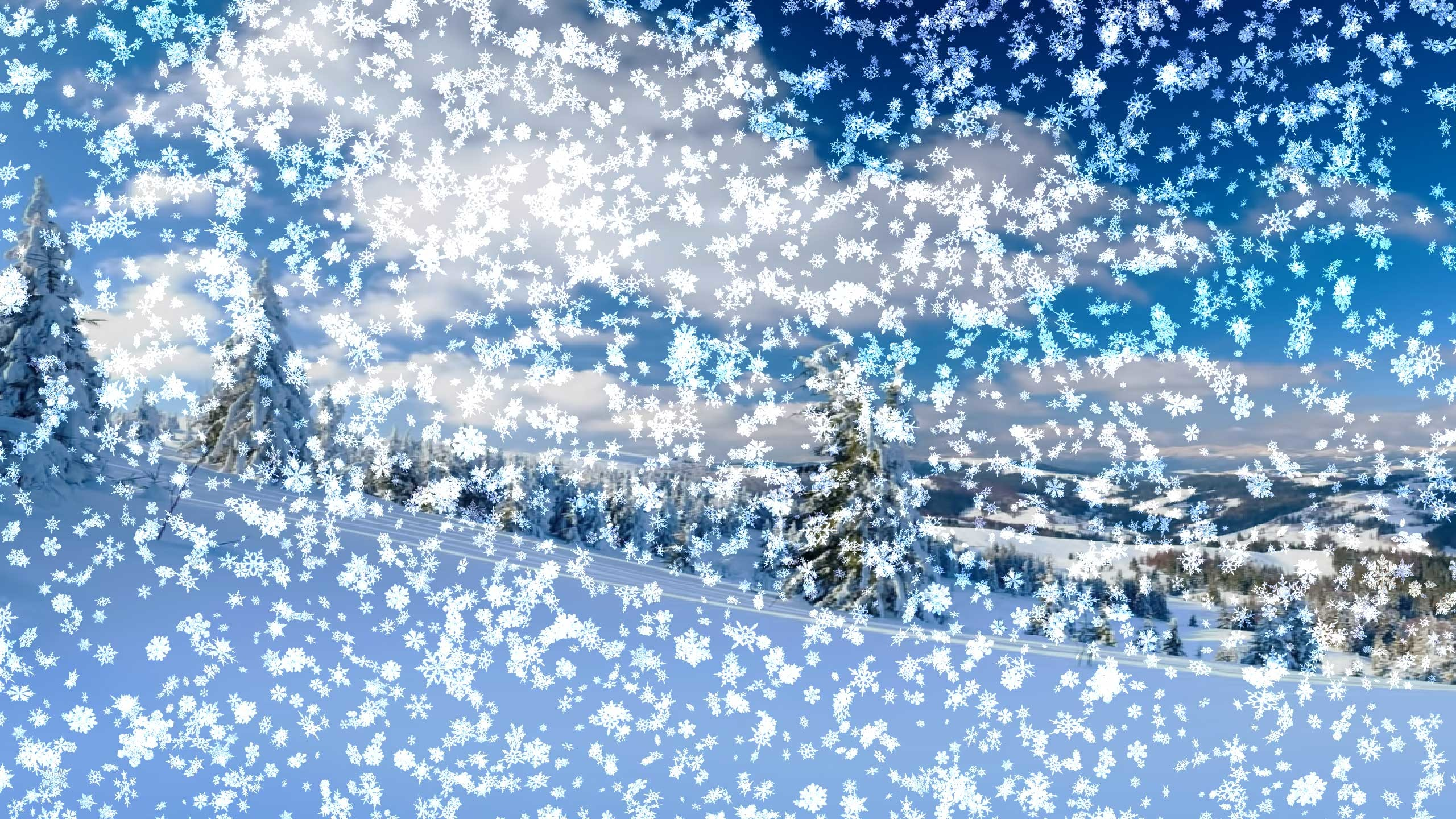 Winter Snow Wallpaper Background 55 Images