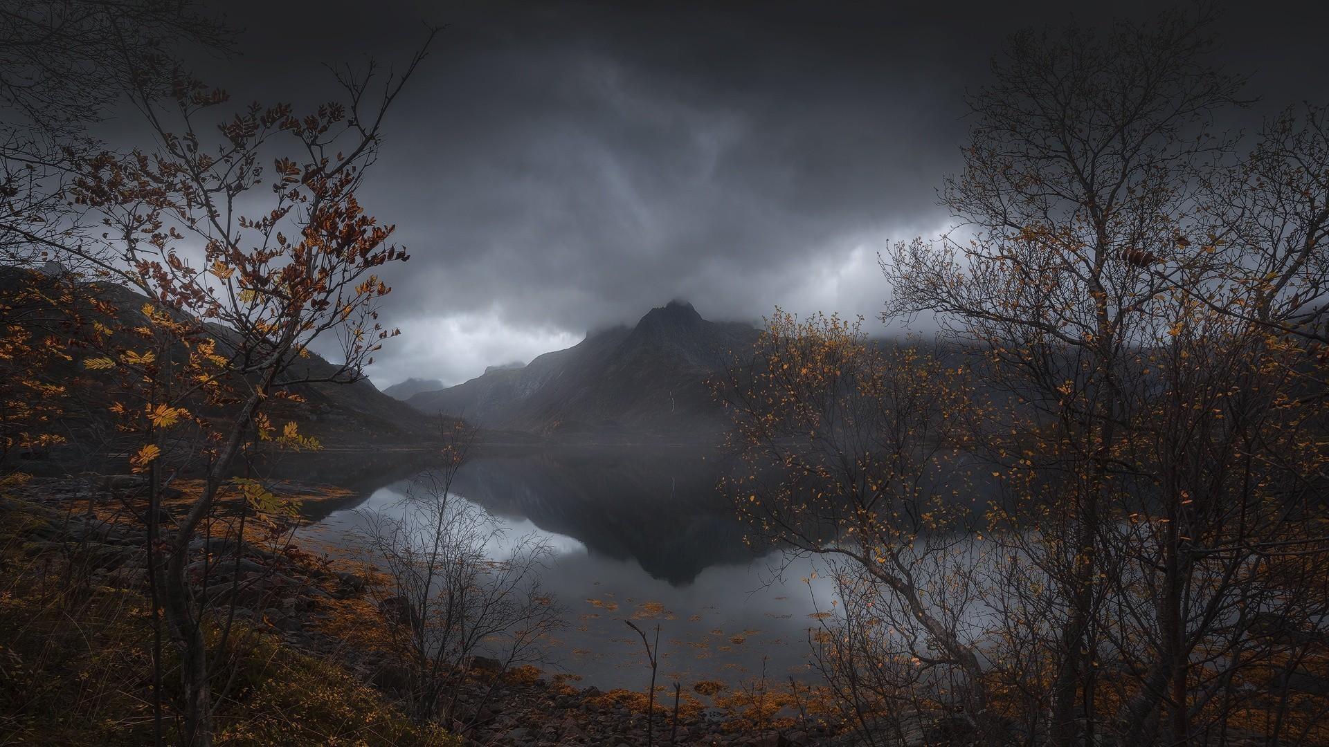 1920x1200 Bild: Grass Green Field & Dark Cloud wallpapers and stock photos. Â«