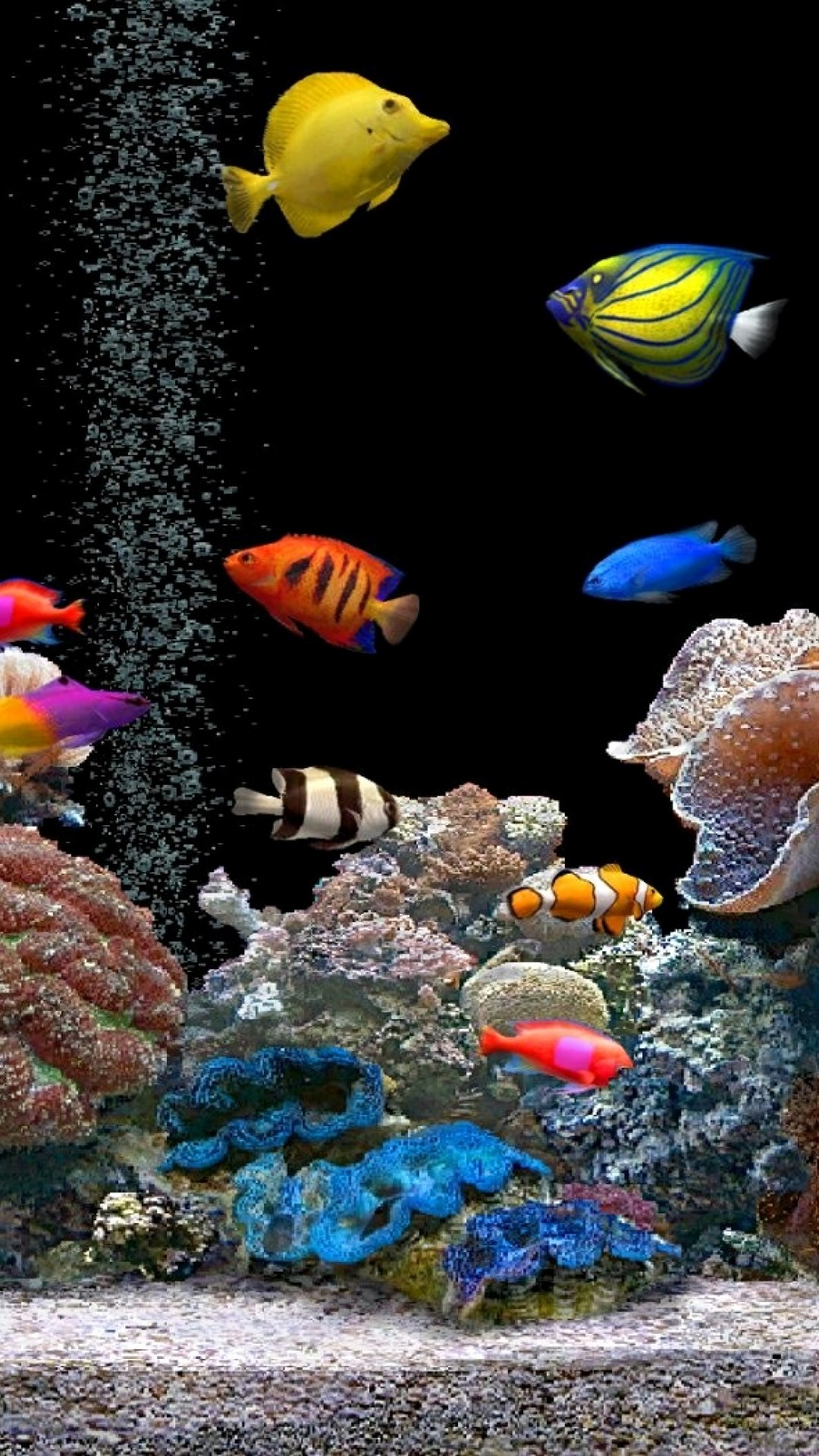 3d fish tank wallpaper 59 images for Live fish tank
