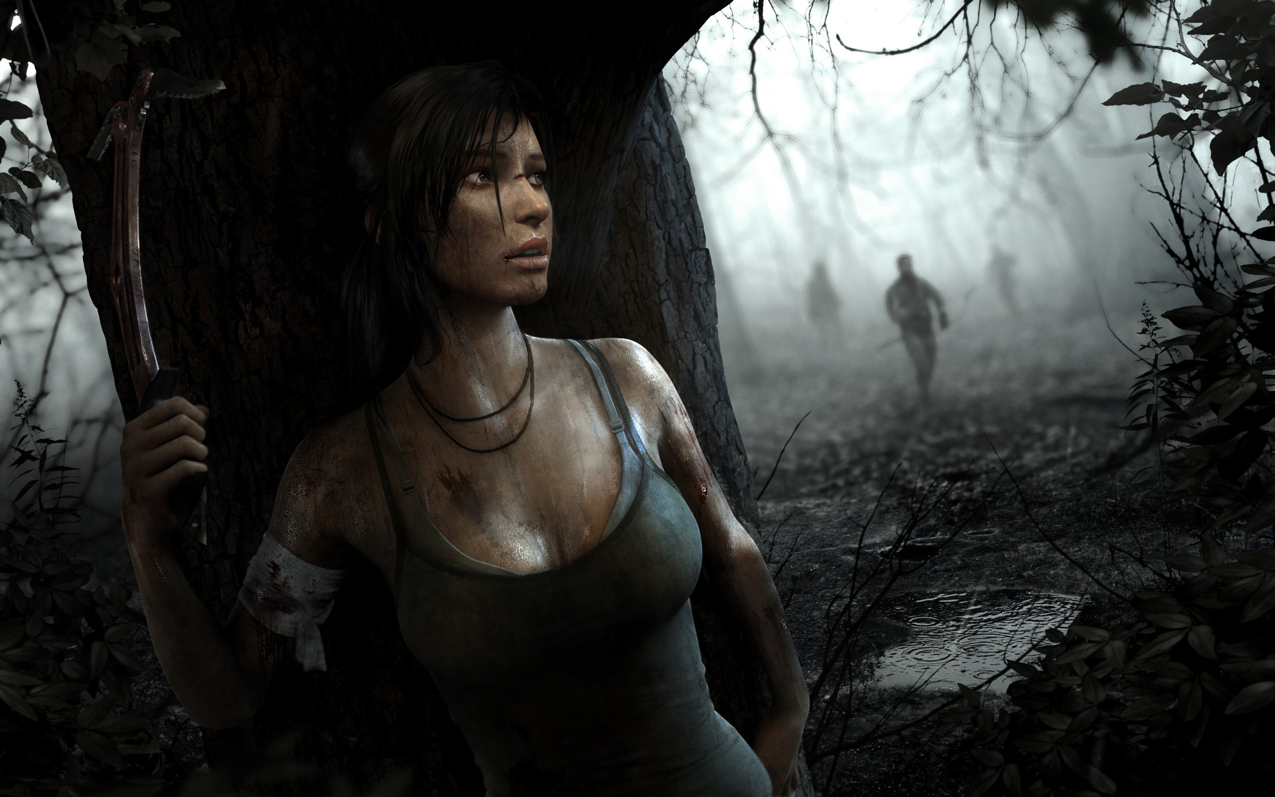 2560x1600 Rise of the Tomb Raider full version activated PC wnload Free | Wallpapers  4k | Pinterest | Tomb raiders and Wallpaper