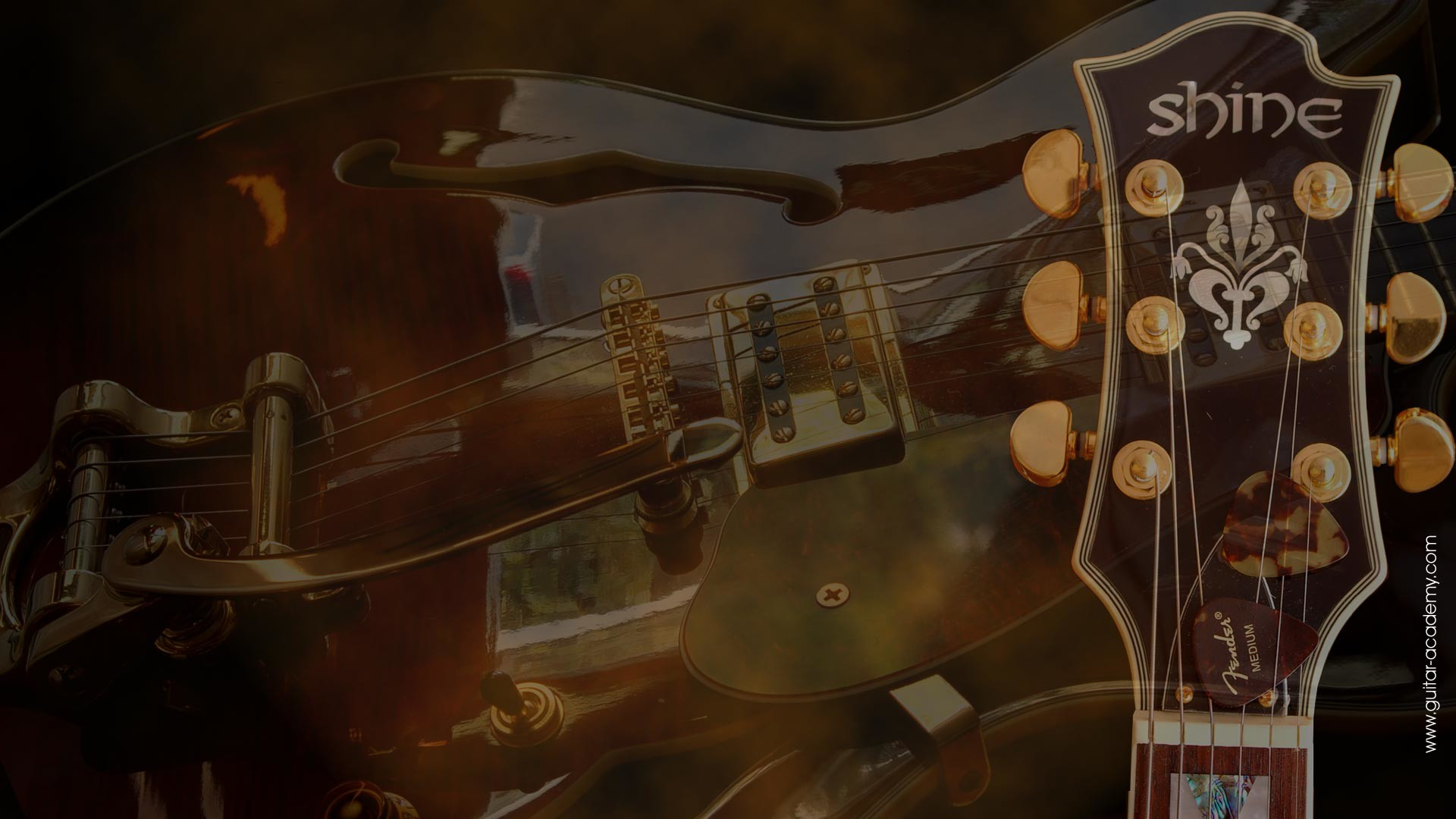 1920x1080 Guitar wallpaper, Shine semi-acoustic guitar, Gibson style