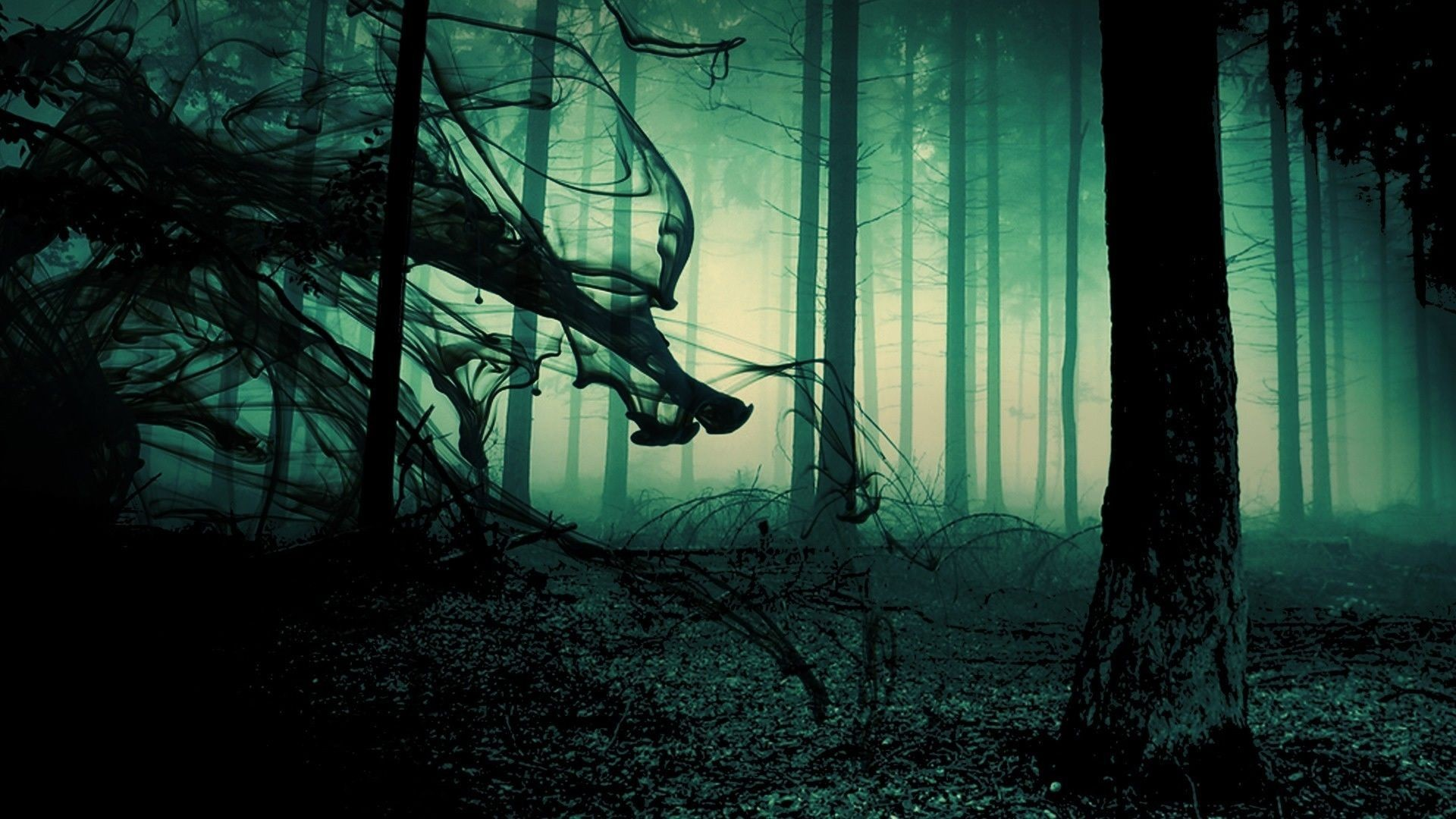 1920x1080 spooky forest background - Google Search