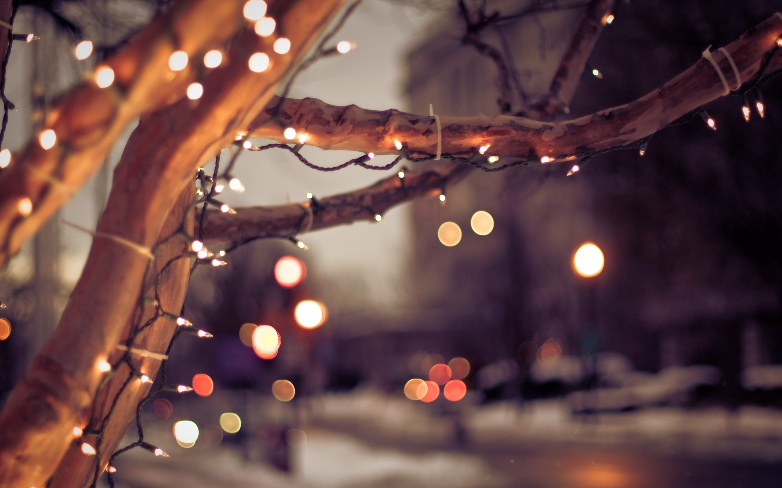 2560x1600 Christmas Lights Bokeh Wallpaper