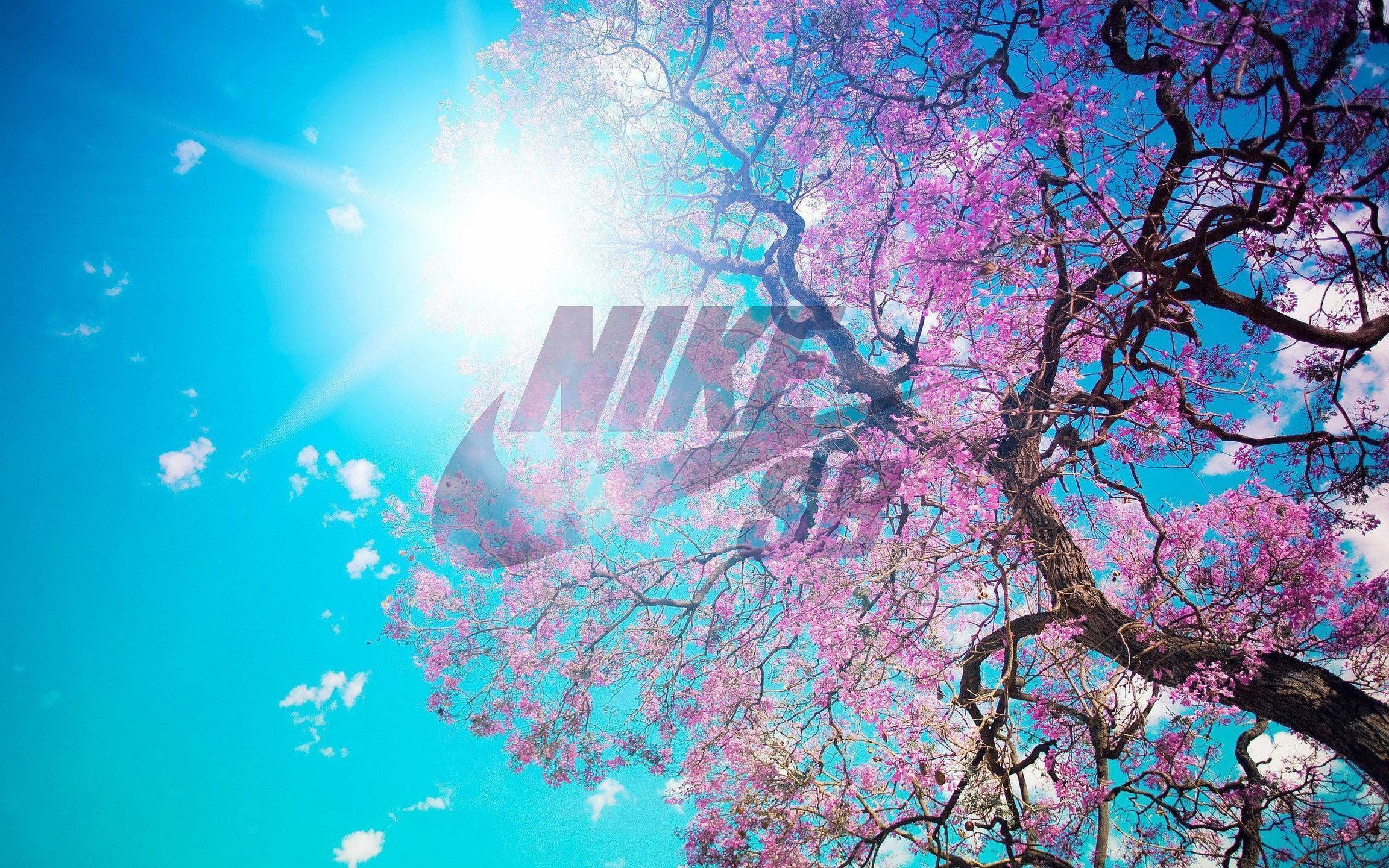 2304x1440 Pics Photos - Nike Wallpapers And Nike Sb Wallpapers