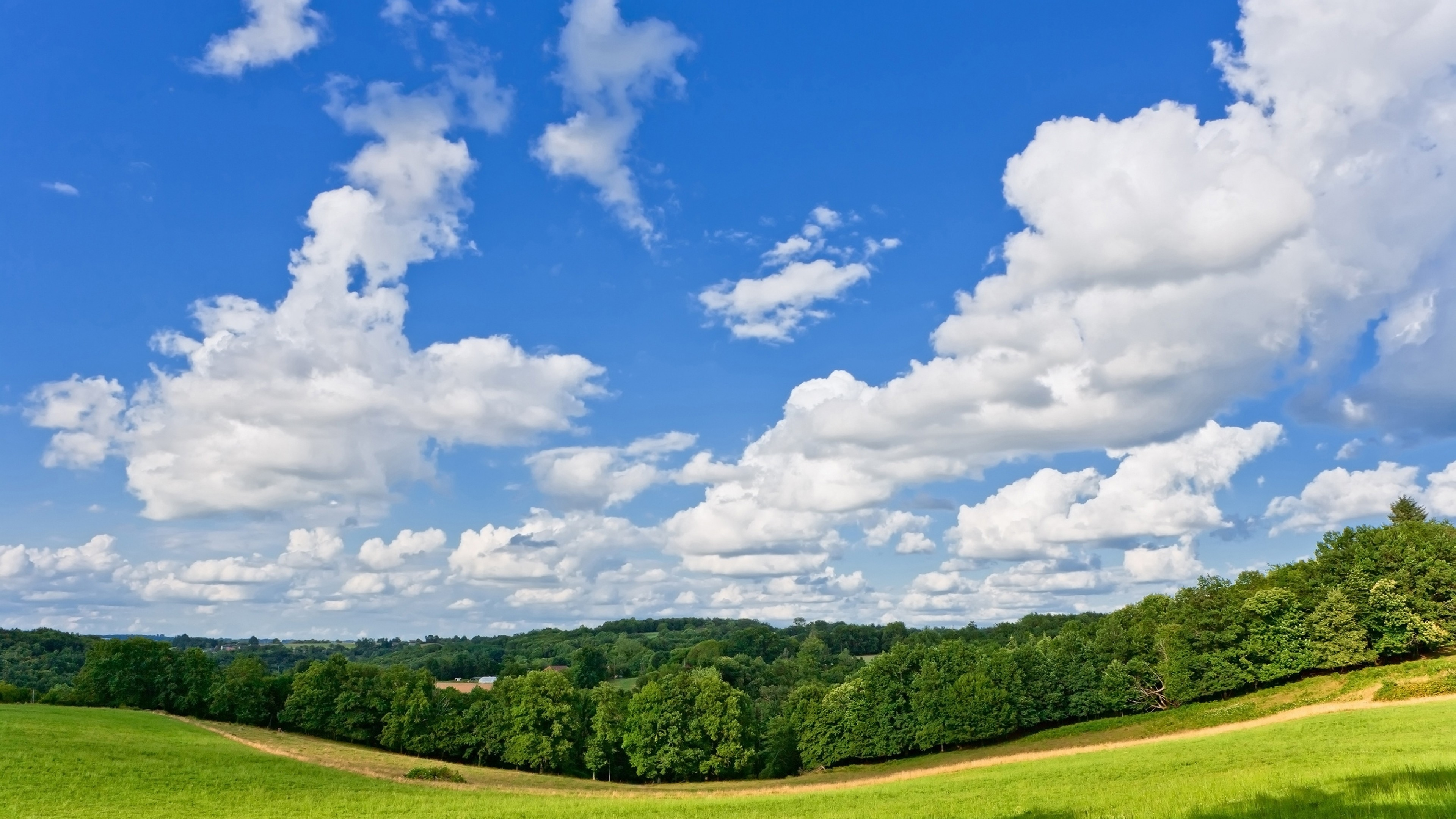 3840x2160 Preview wallpaper panorama, meadow, trees, road, summer