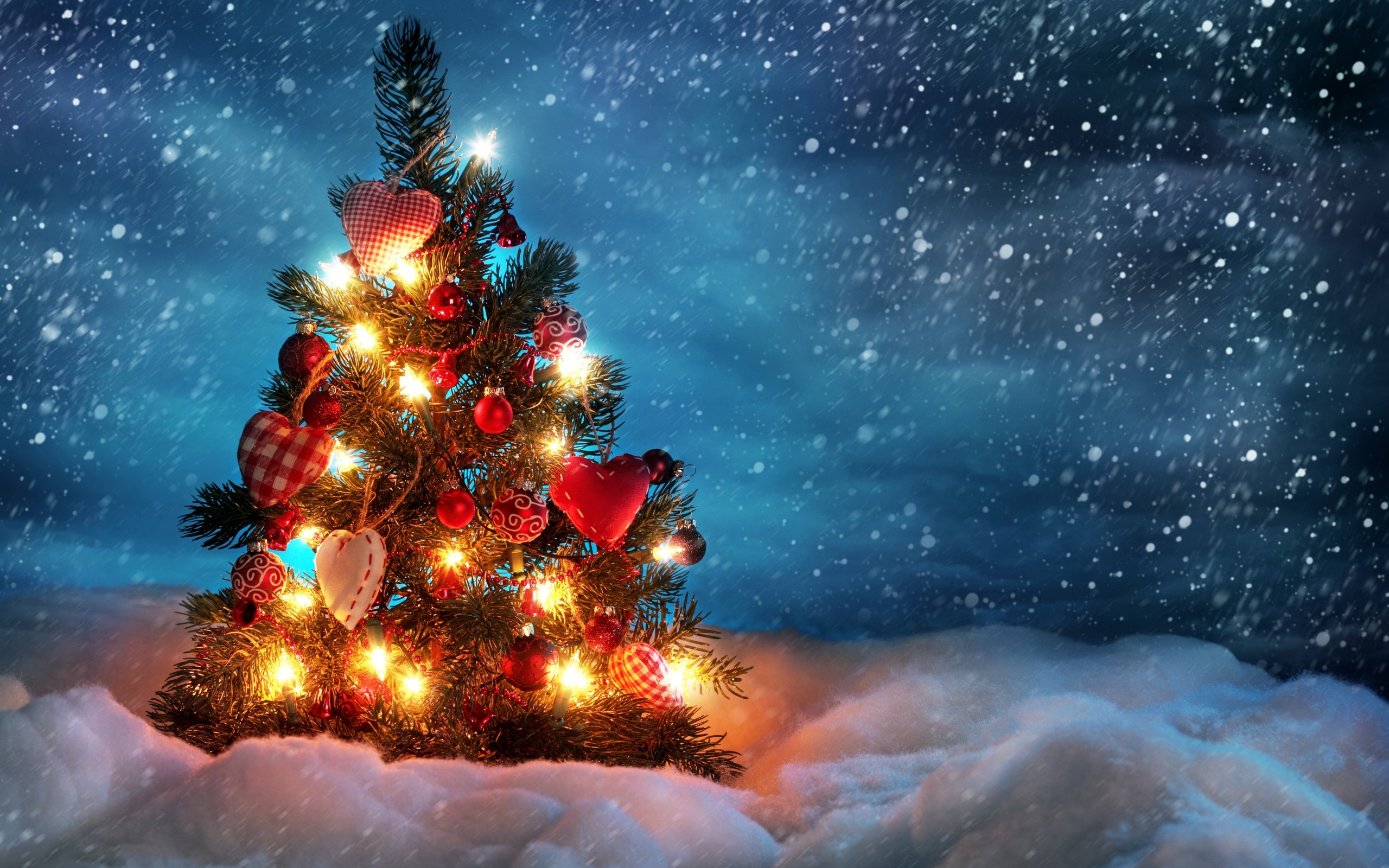 2560x1600 Beautiful Christmas Tree
