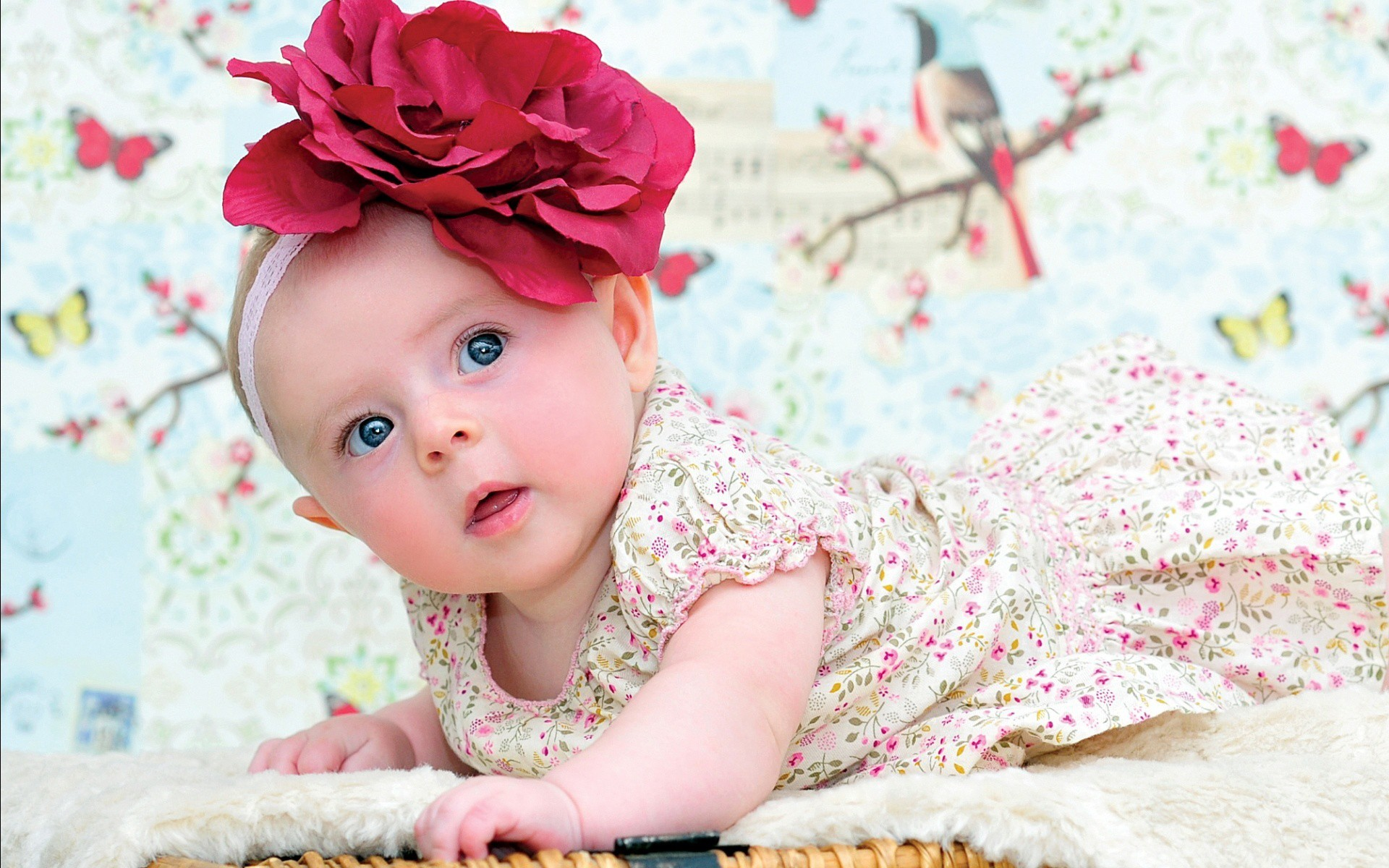 1920x1200 Cute Babies Wallpapers Free Download Funny Family Wallpaper .
