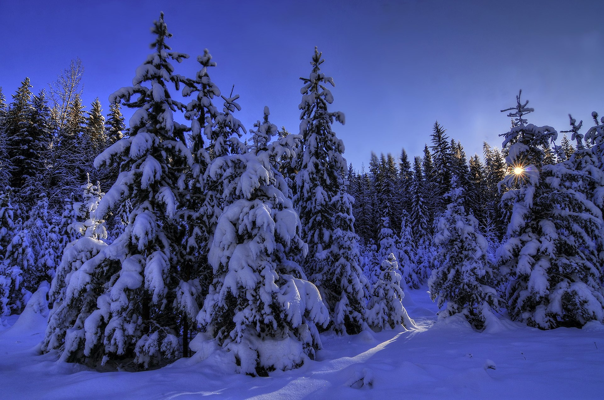 1920x1272 2017-03-25 - winter theme background images, #1656363