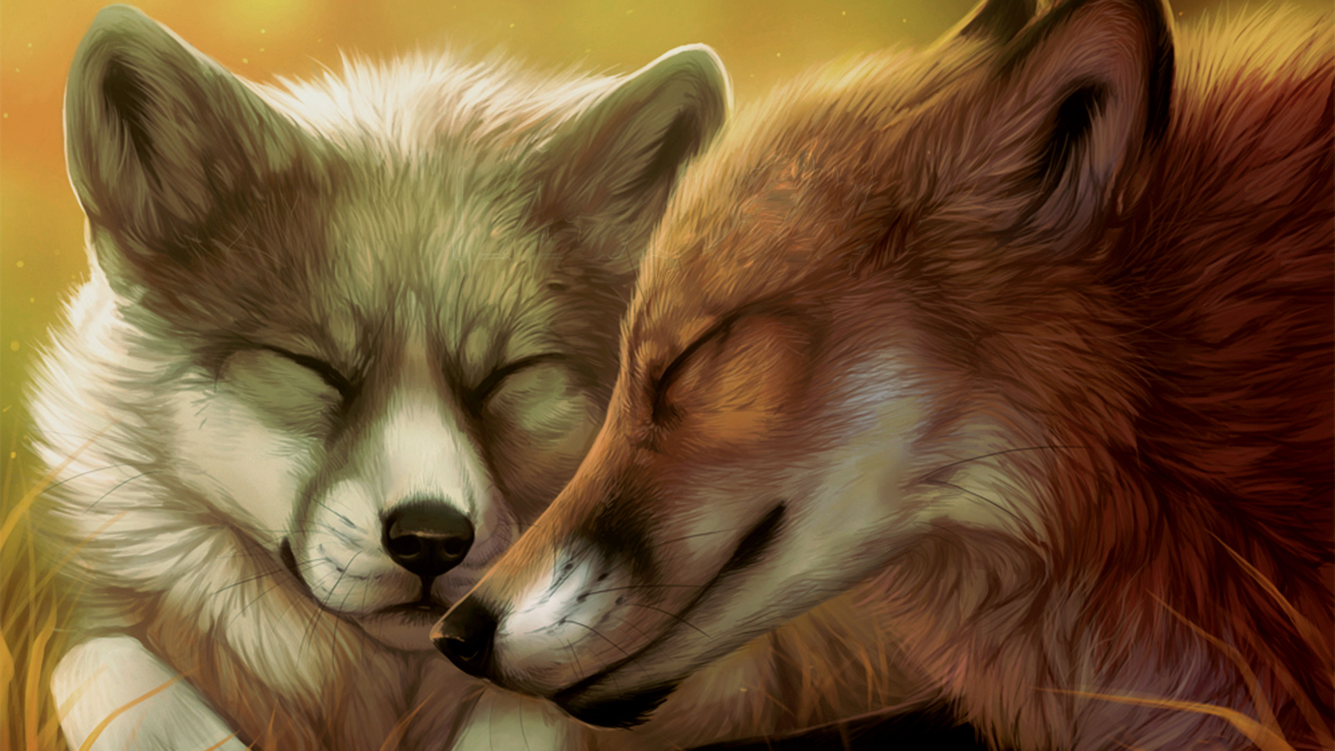 1920x1080 Wolf love wallpaper - photo#21