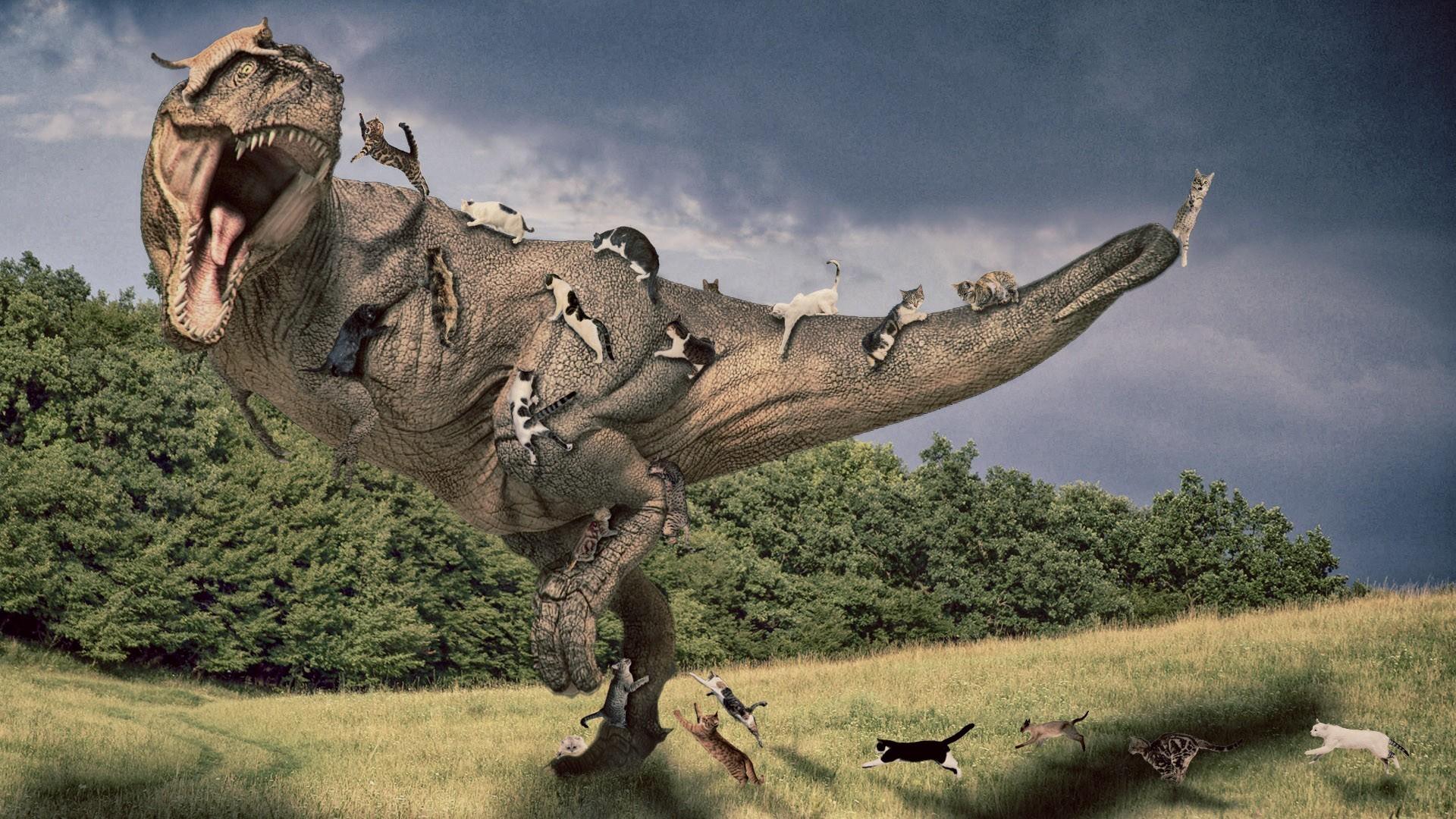 t rex wallpaper 64 images