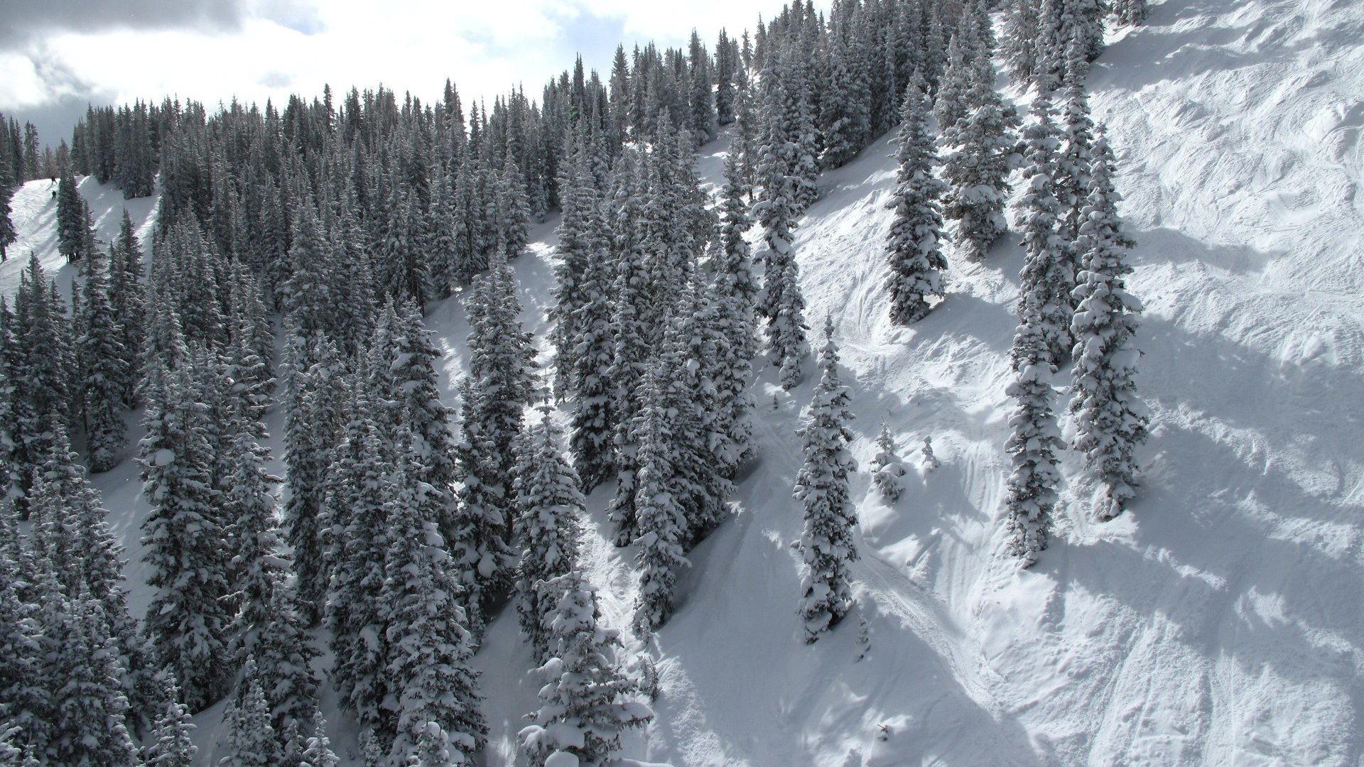 Live Snow Wallpaper (31+ Images