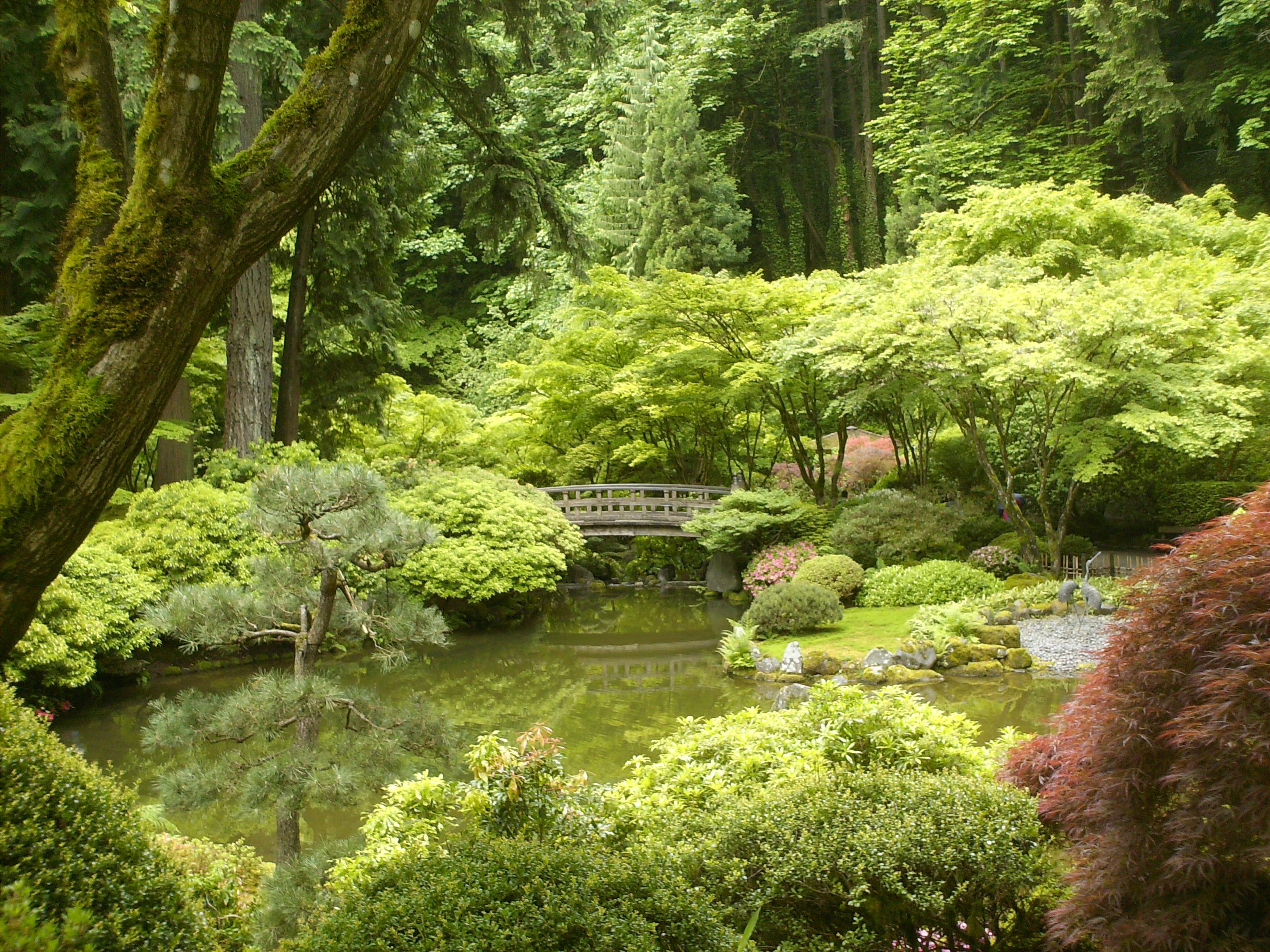 Moss Garden Daily Incense Shoyeido