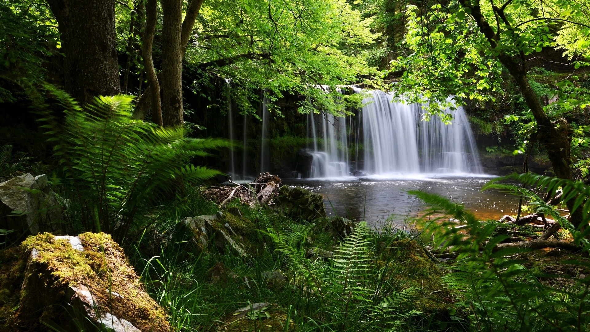 1920x1080 ... Background Full HD 1080p.  Wallpaper waterfall, grass, nature,  shadow