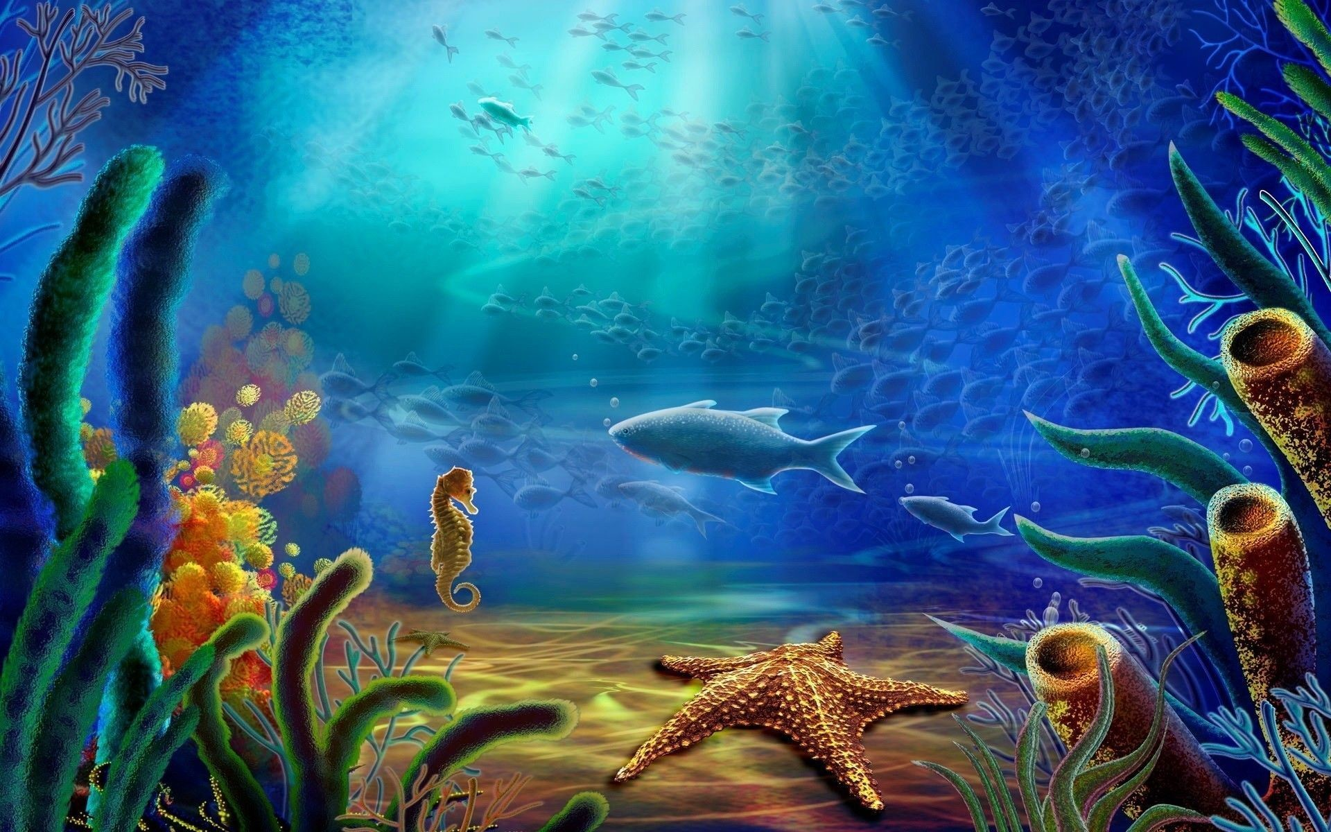 1920x1200 Under water ocean life wallpaper