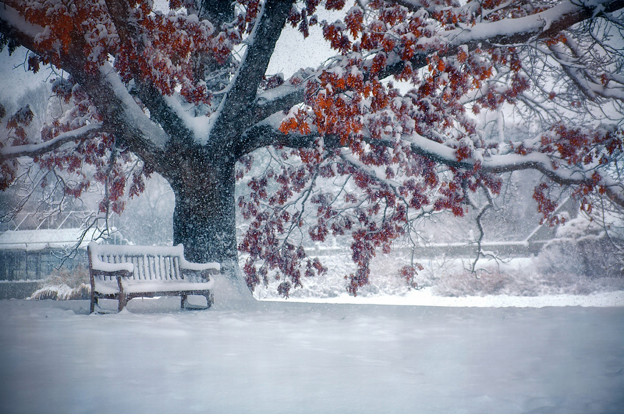 Beautiful Snowfall Wallpapers 66