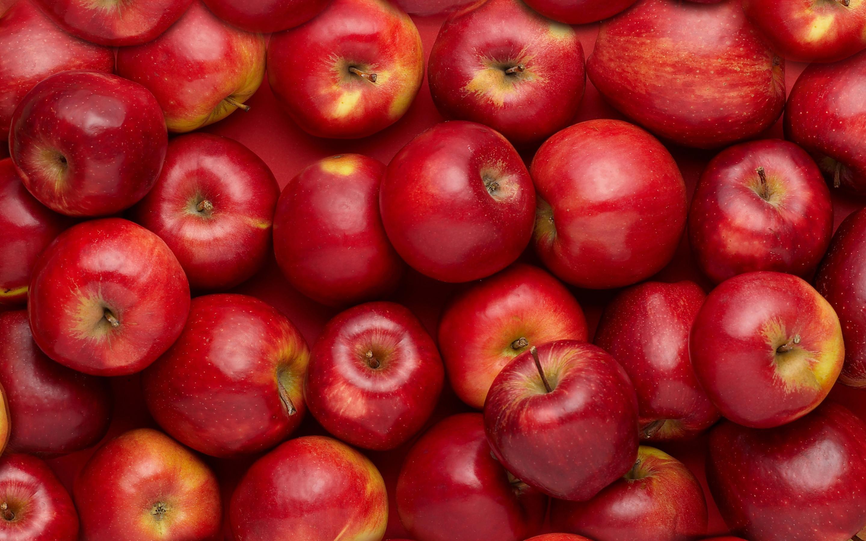 fruit wallpaper 67 images