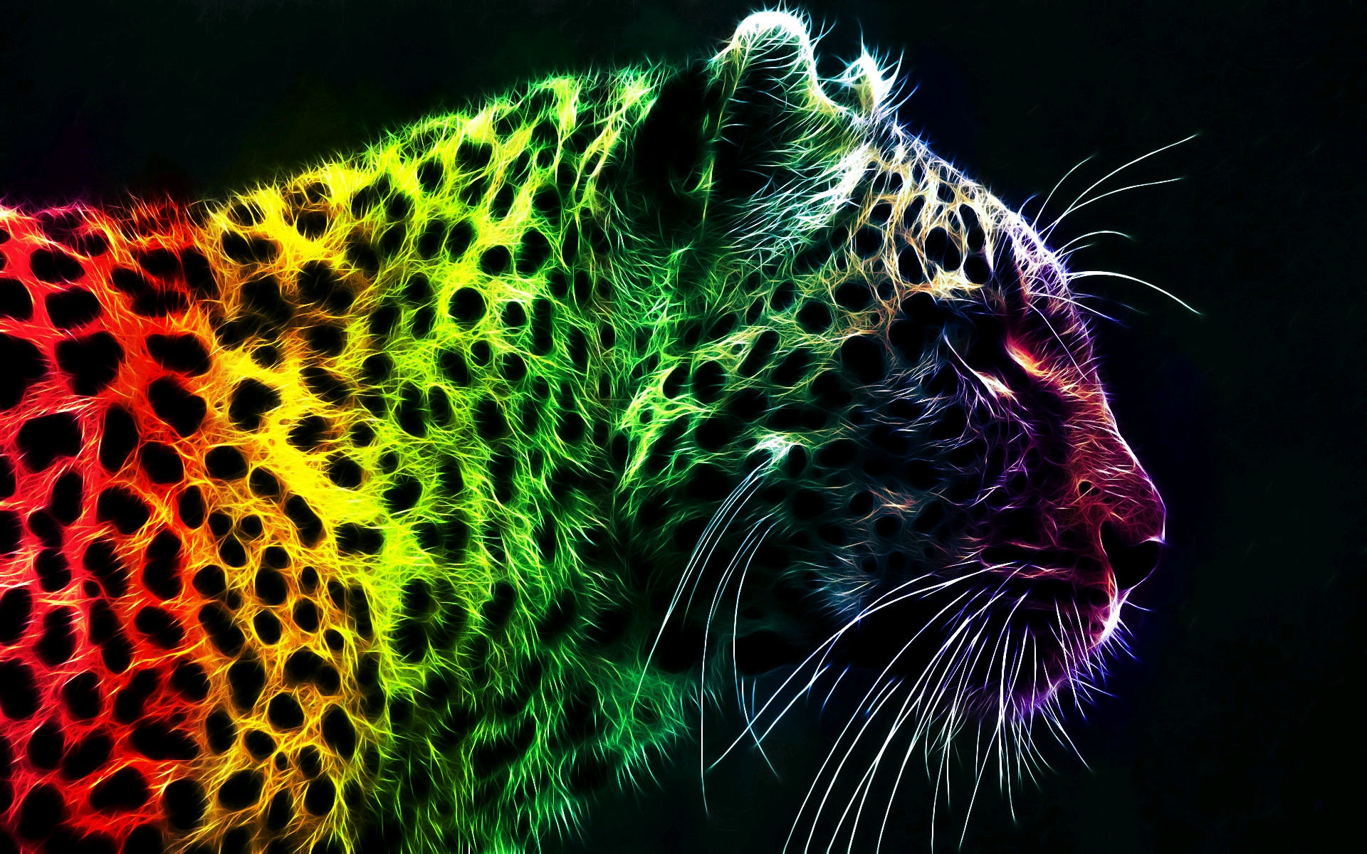1920x1200 Cool Rainbow Leopard Wallpapers