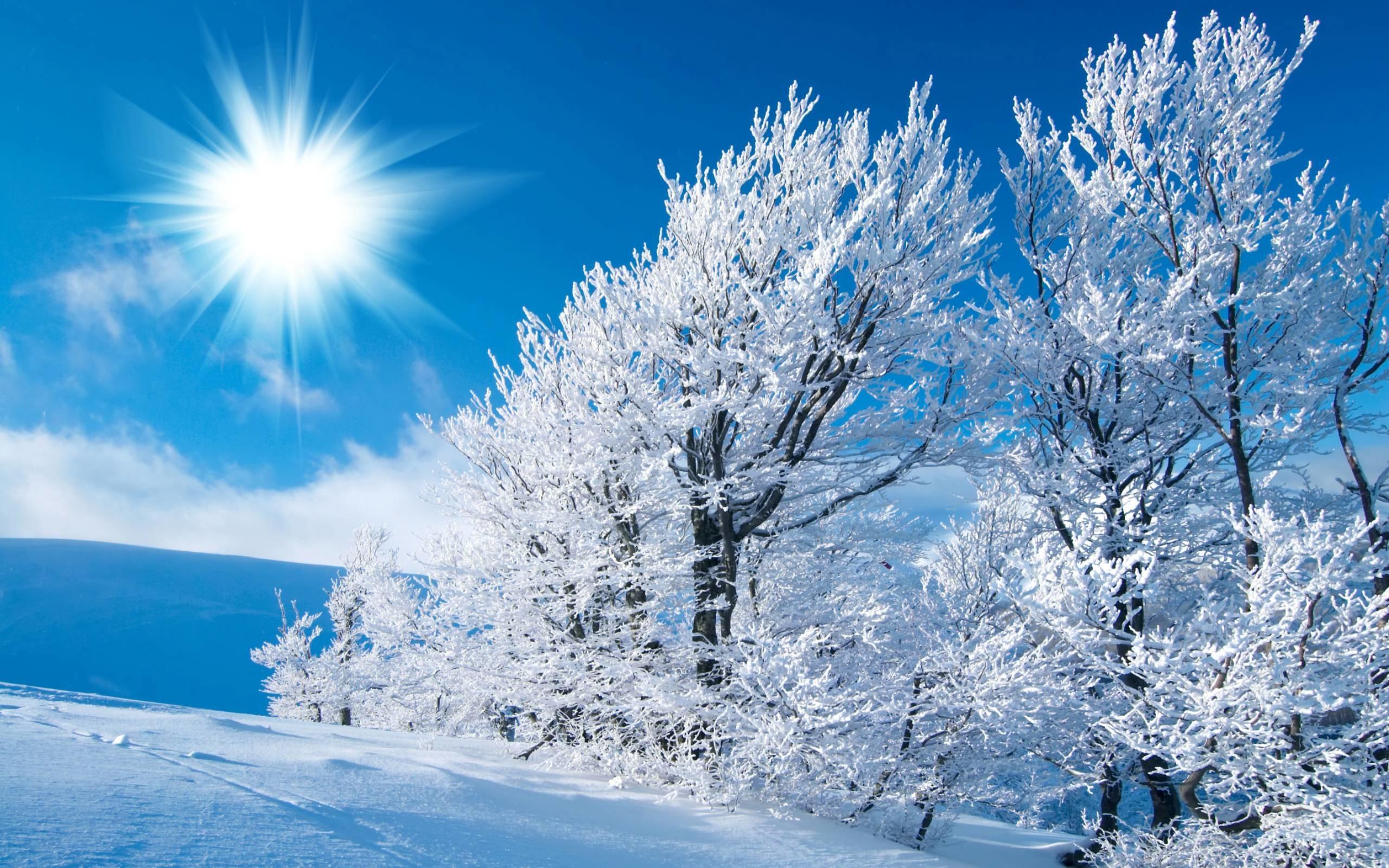 Cozy Winter Scenes Wallpaper (41+ images)