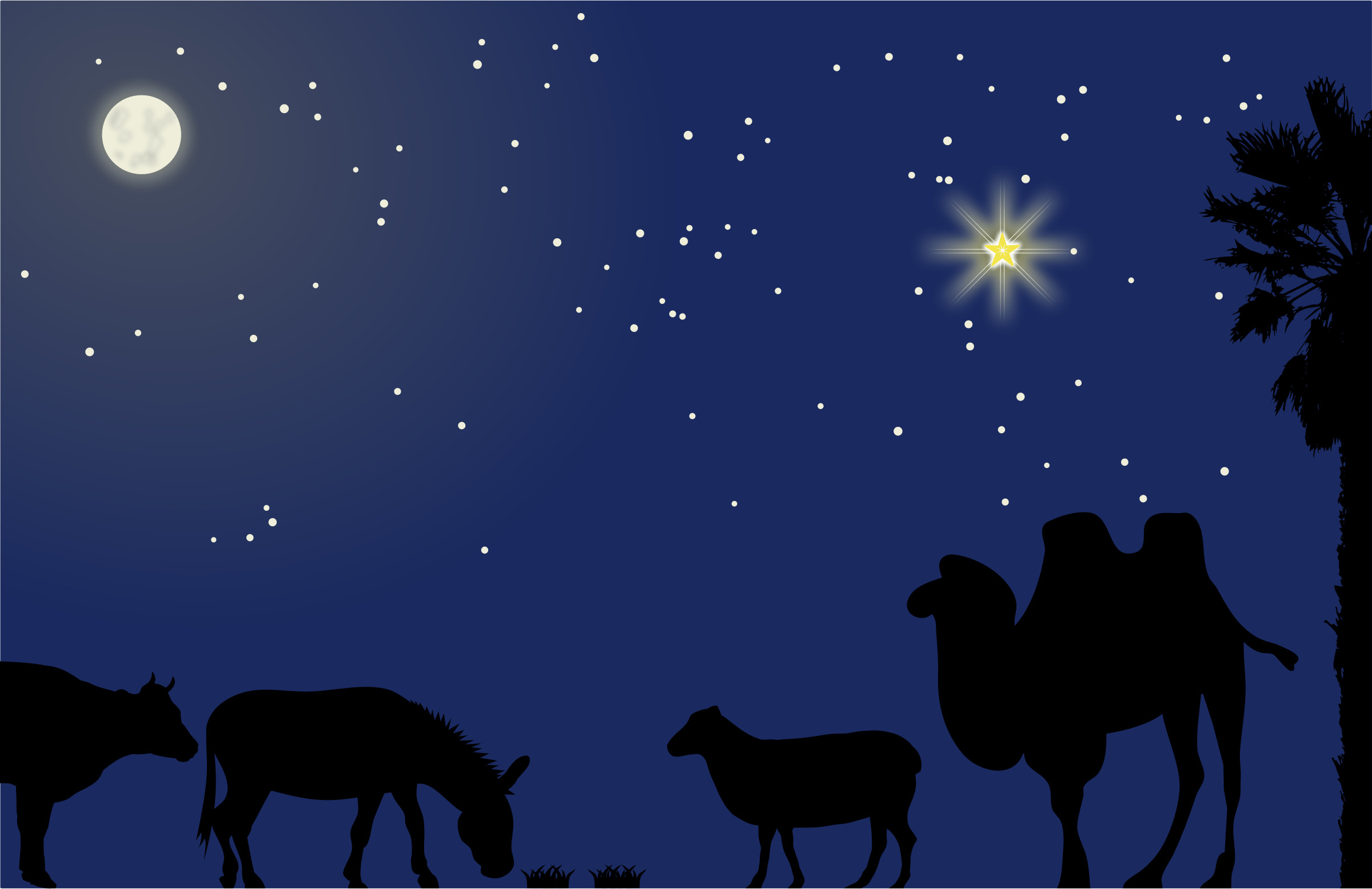 nativity wallpaper  56  images