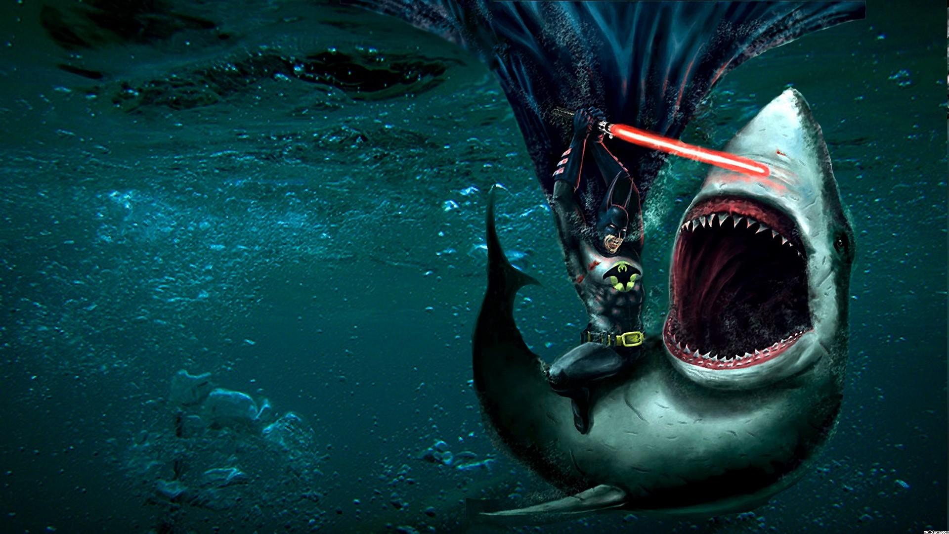 san jose sharks hd wallpaper 65 images