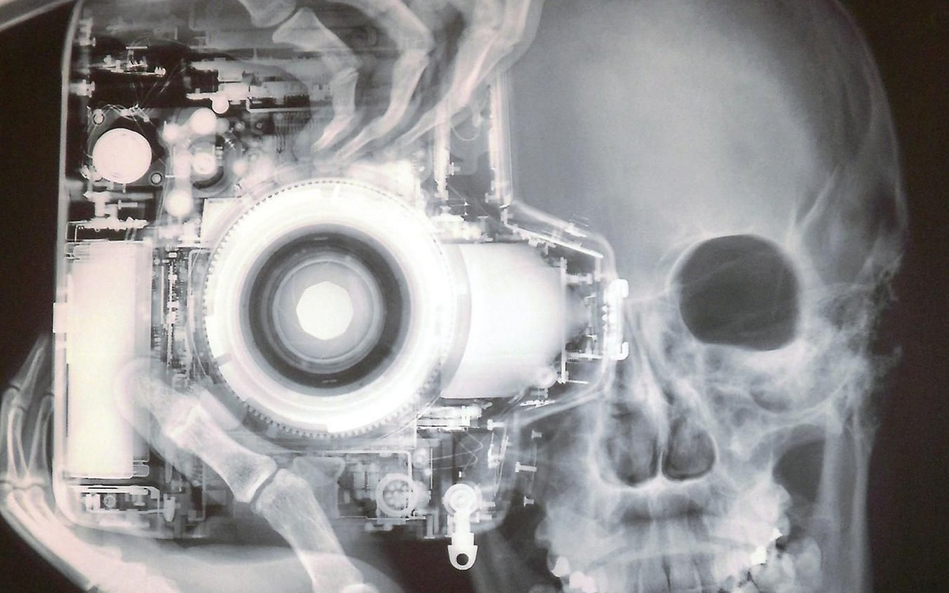 1920x1200 Photography - X-ray Wallpaper