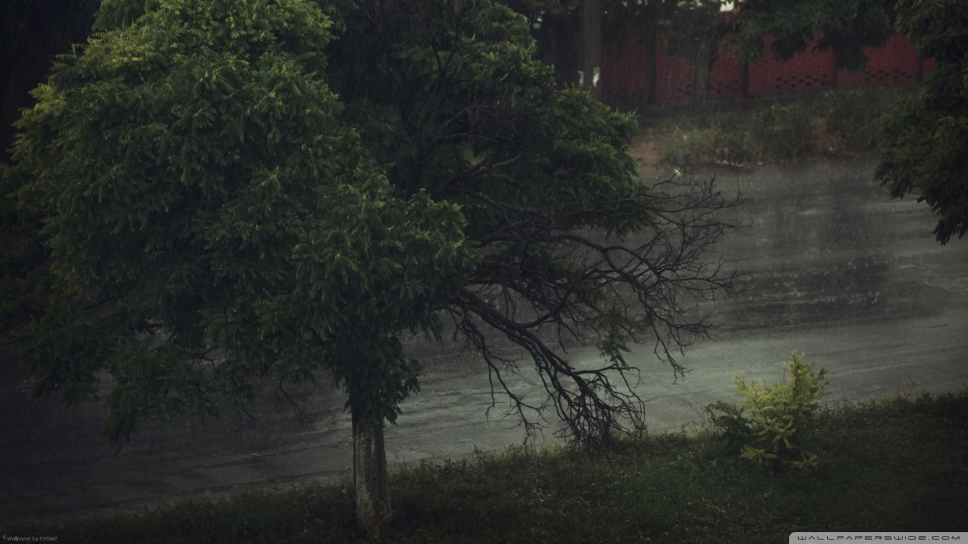 Rainy Wallpaper 72 Images