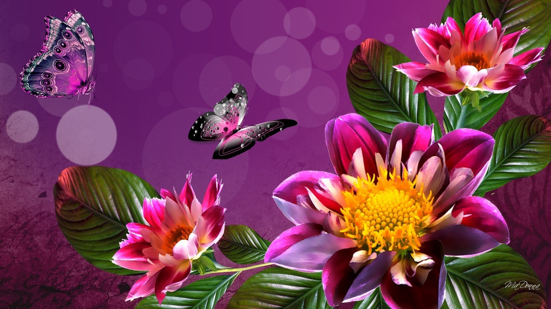 HD Wallpaper For PC Full Screen (75+ Images