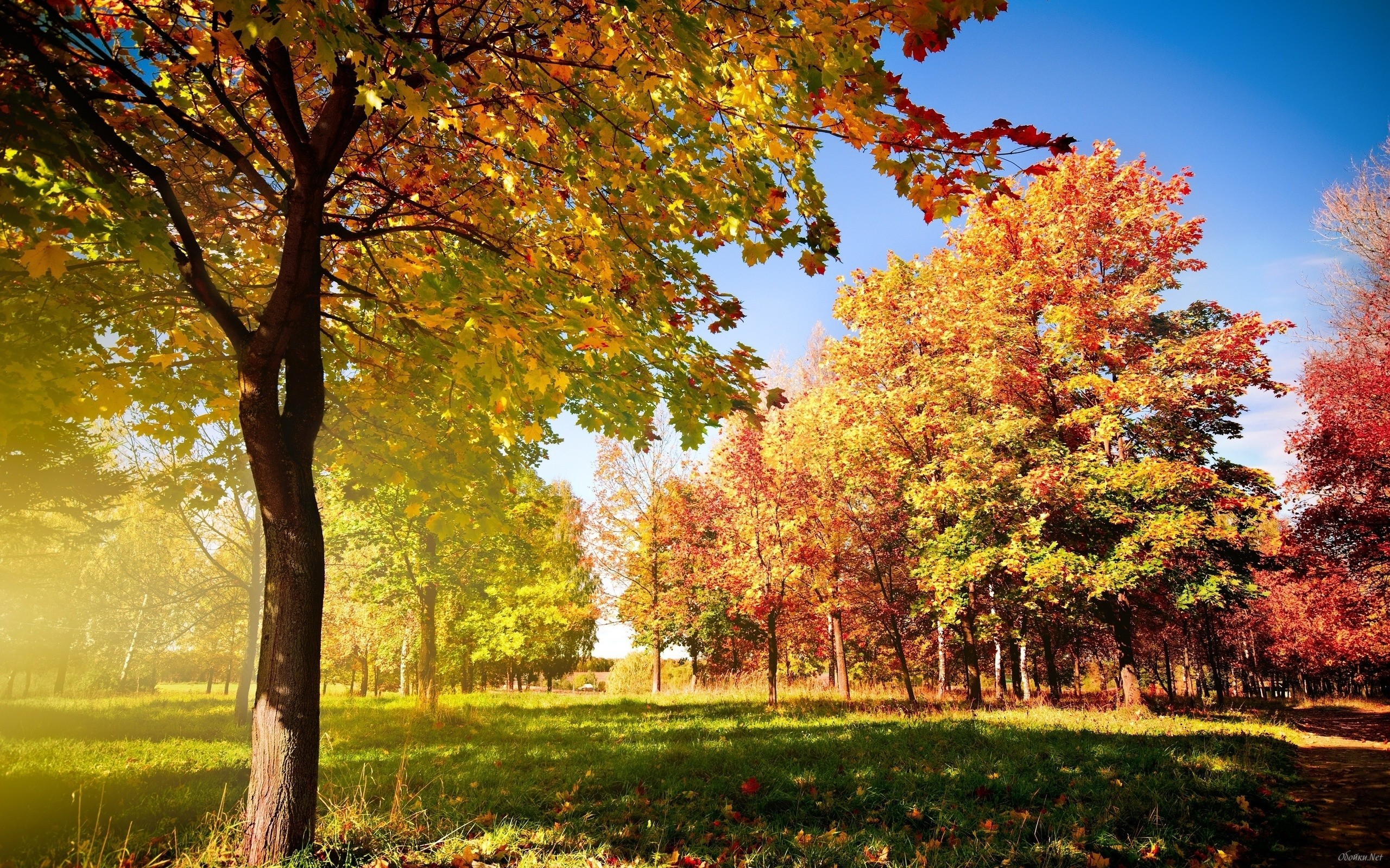 Surprising Early Fall Desktop Wallpapers 43 Images Home Interior And Landscaping Ologienasavecom
