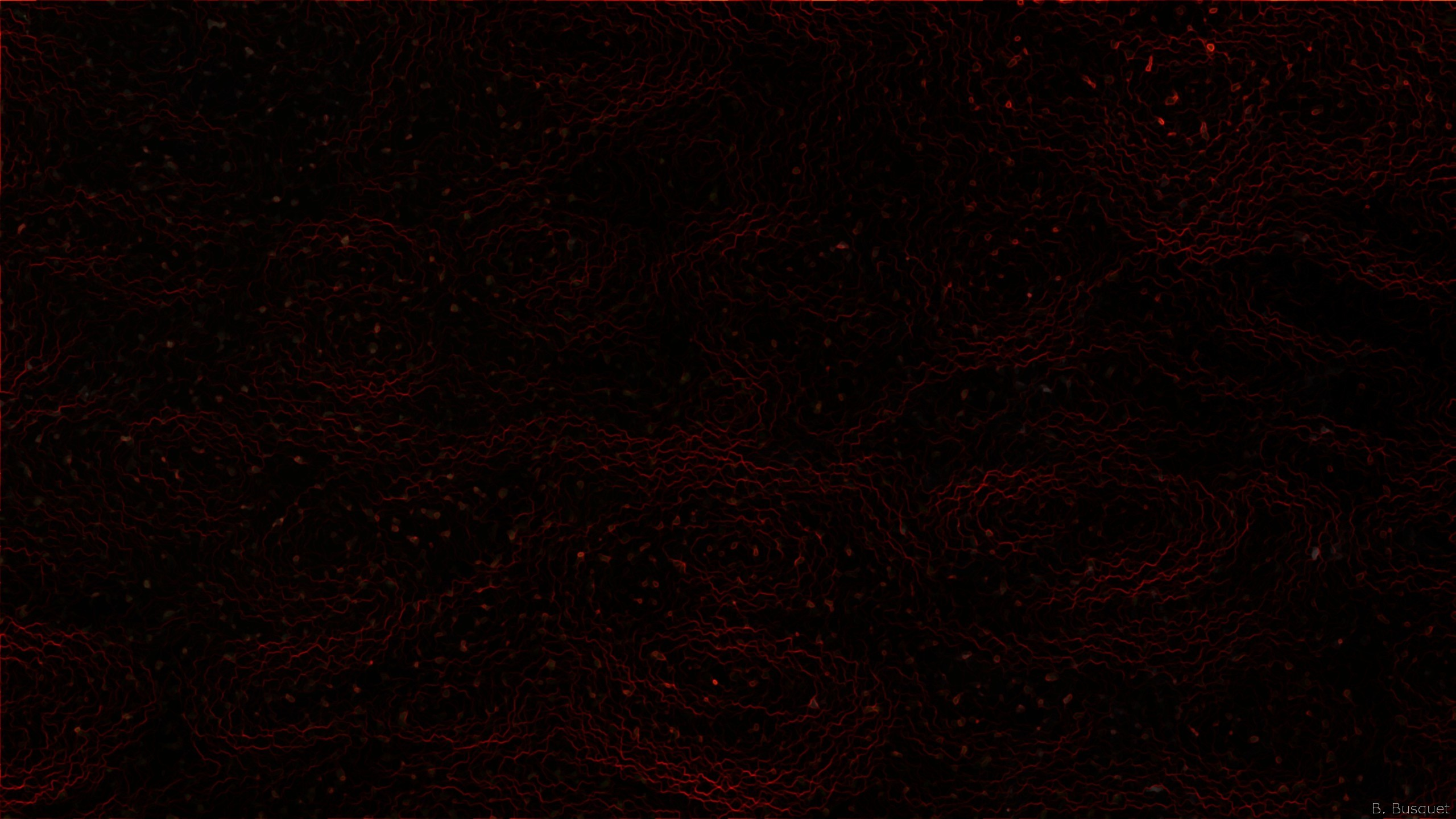 2560x1440 Abstract wallpaper with a dark pattern in black and red colors.