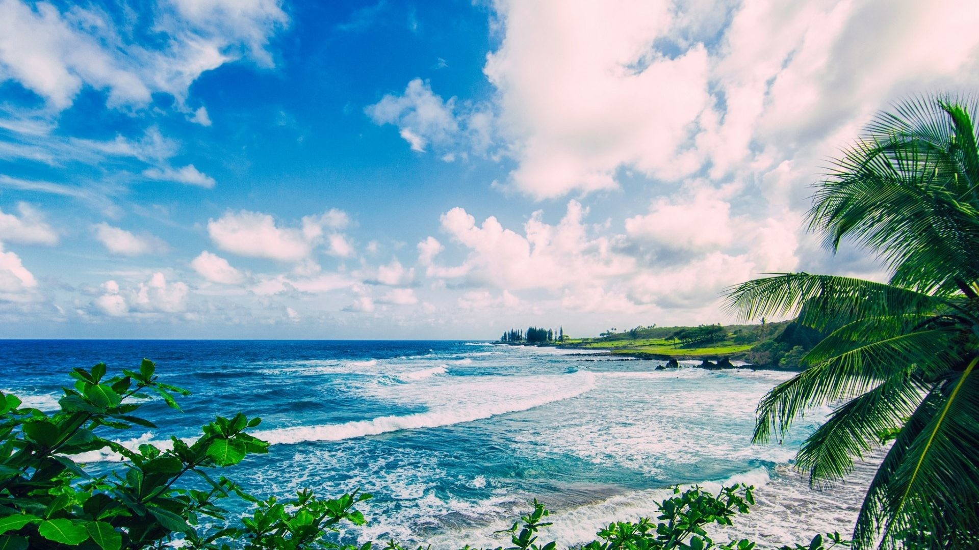 Tropical Island Beach Ambience Sound: Hawaii Desktop Backgrounds (63+ Images