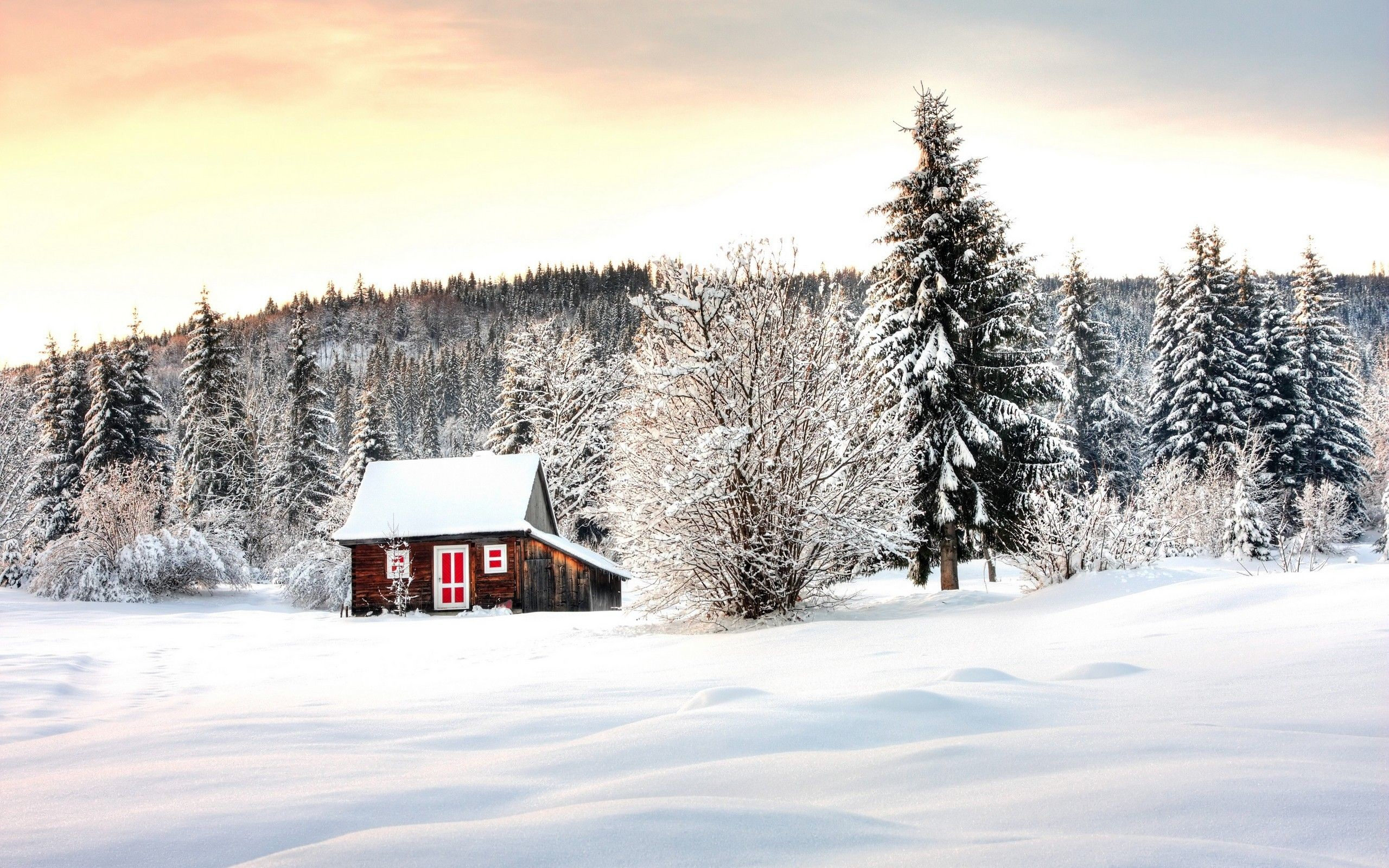 2560x1600 Winter cabin scenes wallpapers download at wallpaperbro jpg  Cabin  christmas winter wallpaper siberian picturesque