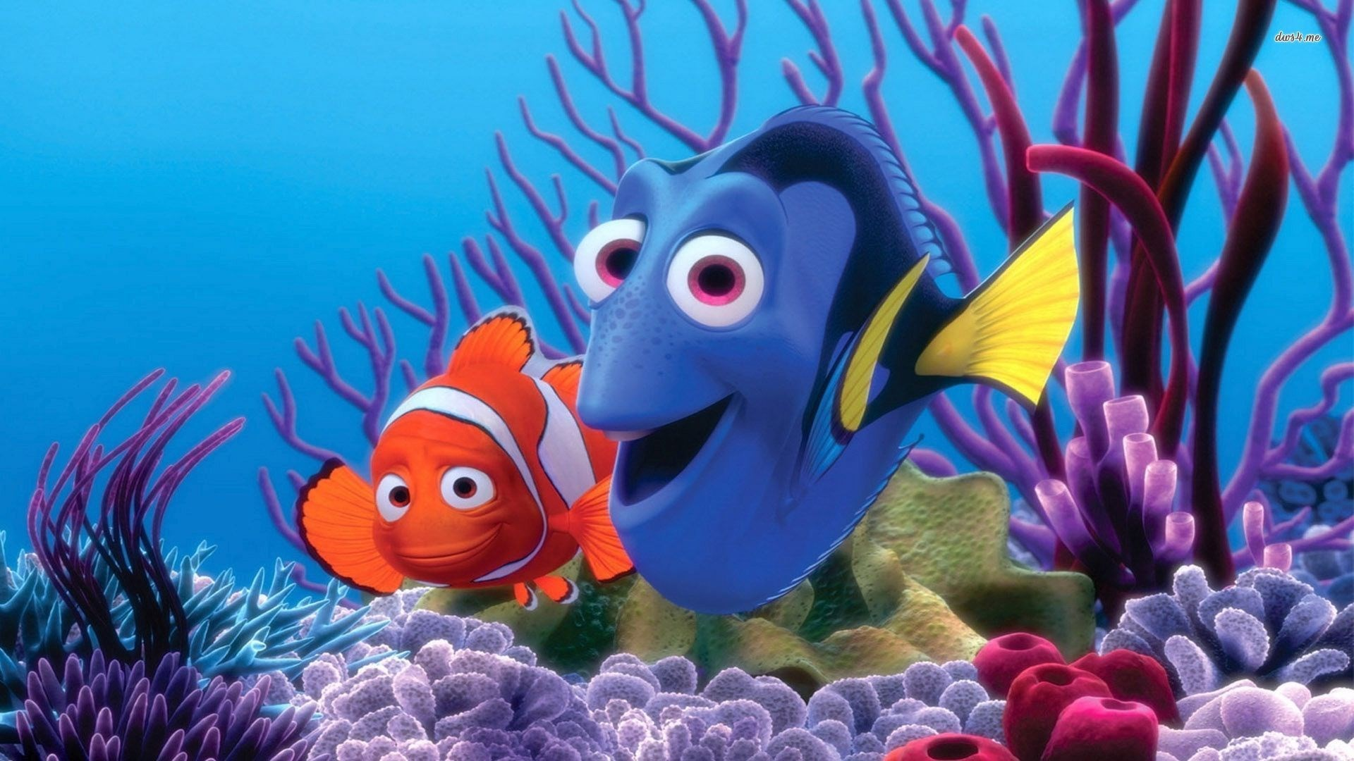 1920x1080 Aquarium Backgrounds EBay Download Finding Nemo