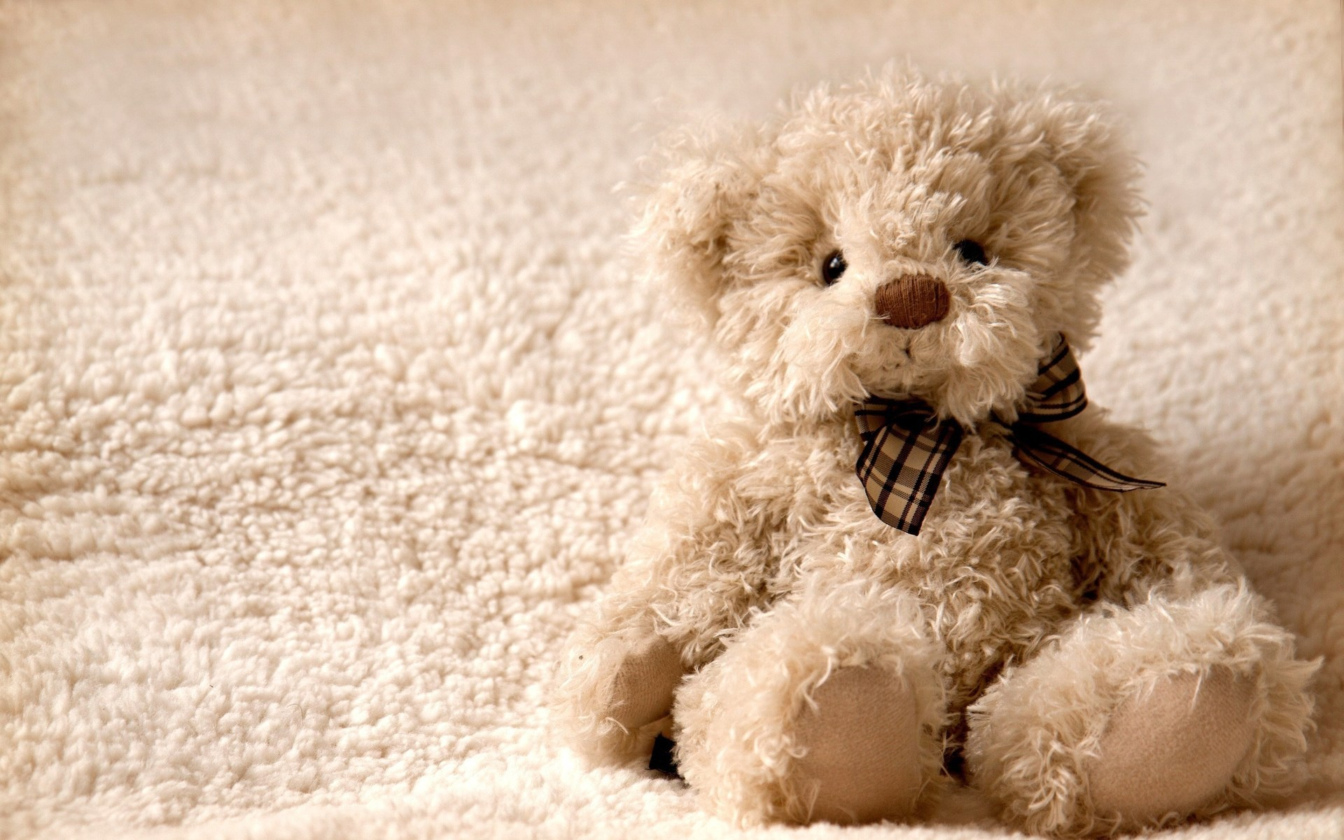 teddy bear wallpaper and screensavers (65+ images)