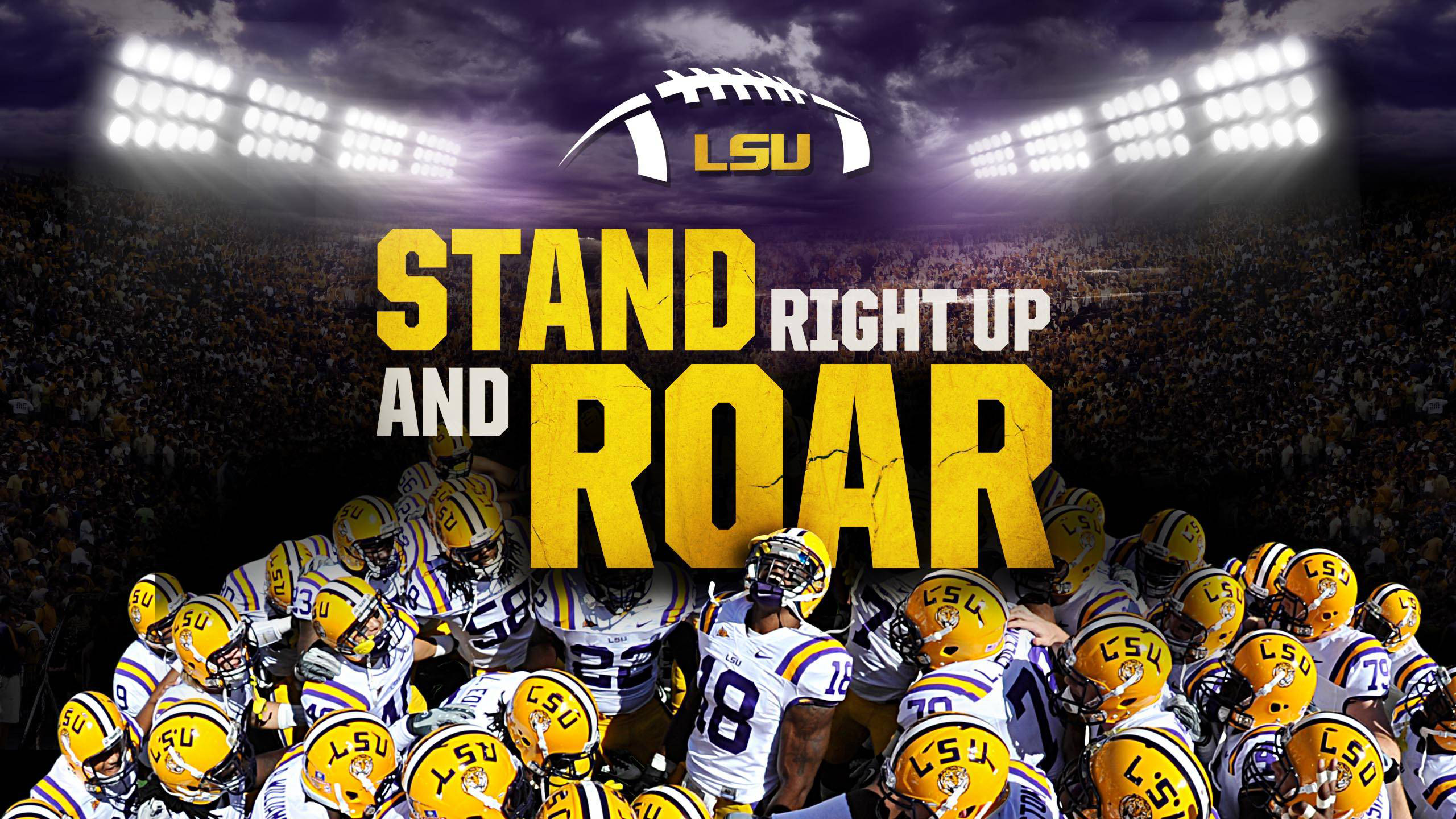2560x1440 Pictures lsu Wallpapers HD.