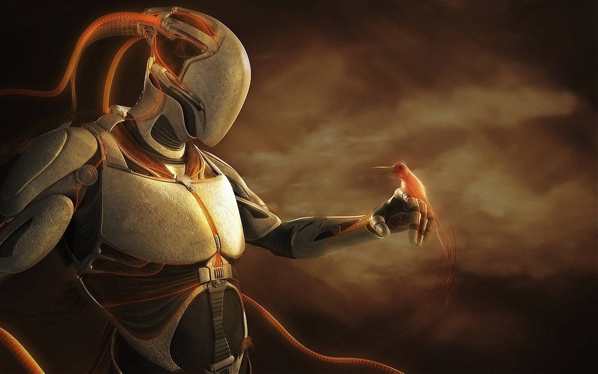 1920x1200 robots have feelings, robot, bird, art, fantasy