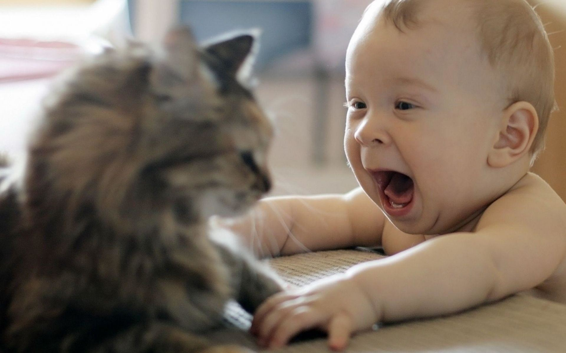 1920x1200 Funny baby wallpapers hd | Zem Wallpaper Is The Best Place Where .