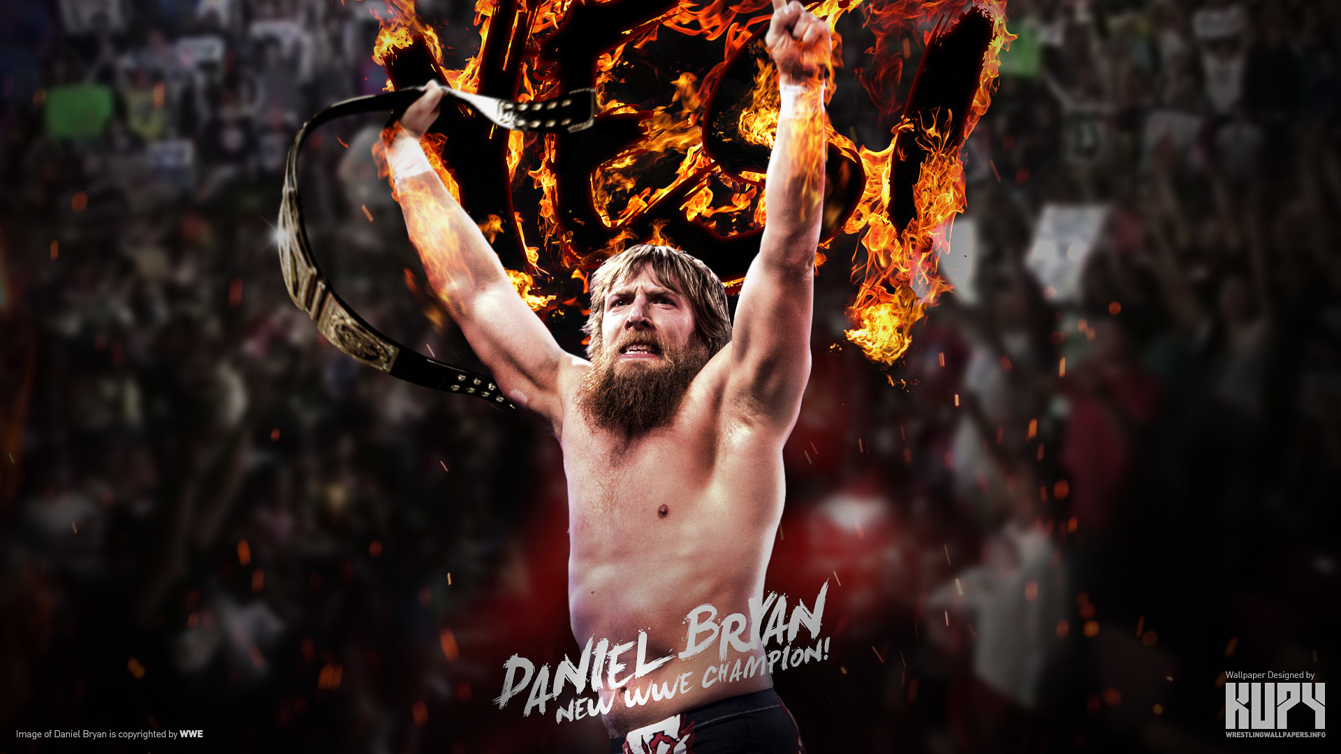 1920x1080 WWE Champion Daniel Bryan wallpaper 1920×1200 | 1920×1080 ...
