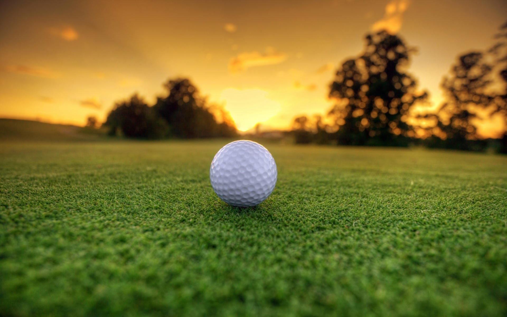 1920x1200 Golf Themes And Backgrounds | Hd Wallpapers