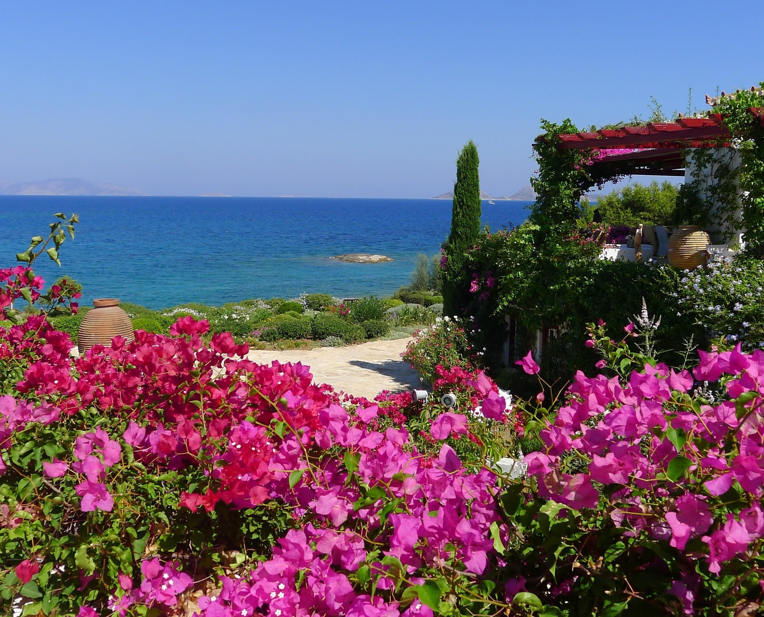 2520x2036 wallpaper beautiful · garden · sea · summer · flowers