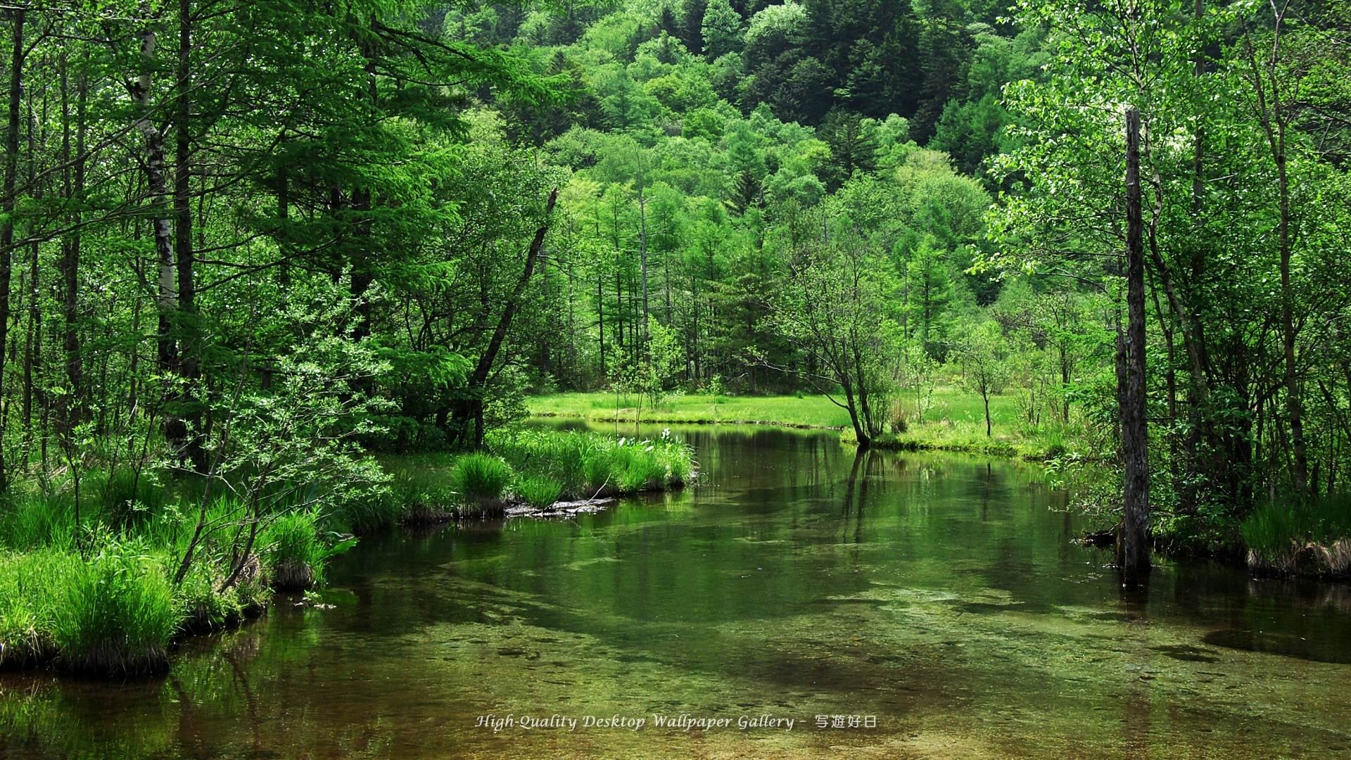 Widescreen Nature Wallpapers High Resolution 73 Images