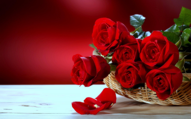 Поздравления с Днем Татьяны 25 января 42