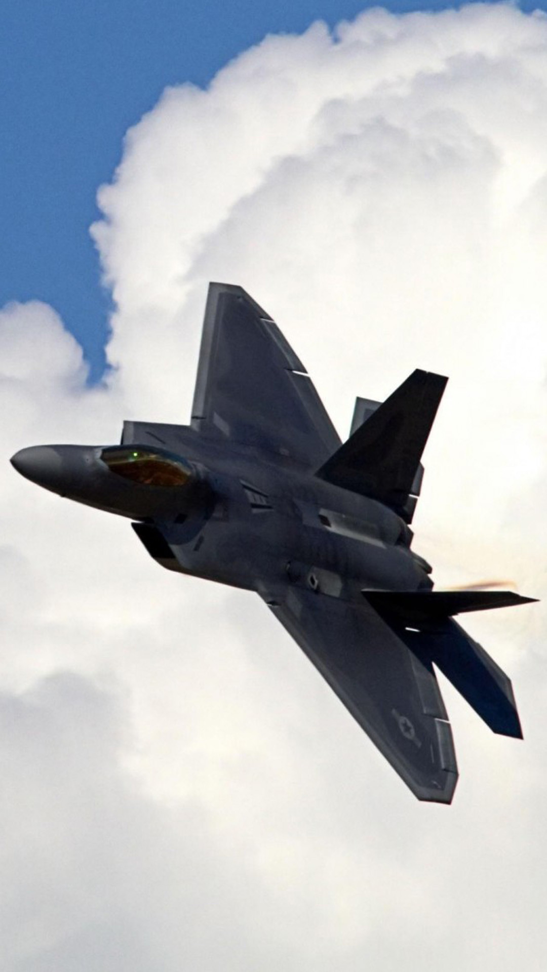 1080x1920 F-22 Raptor S5 Wallpaper